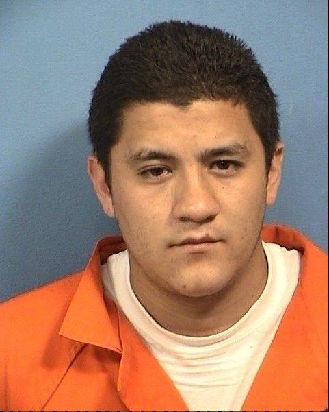 Glendale Heights man imprisoned for killing girlfriend's Chihuahua