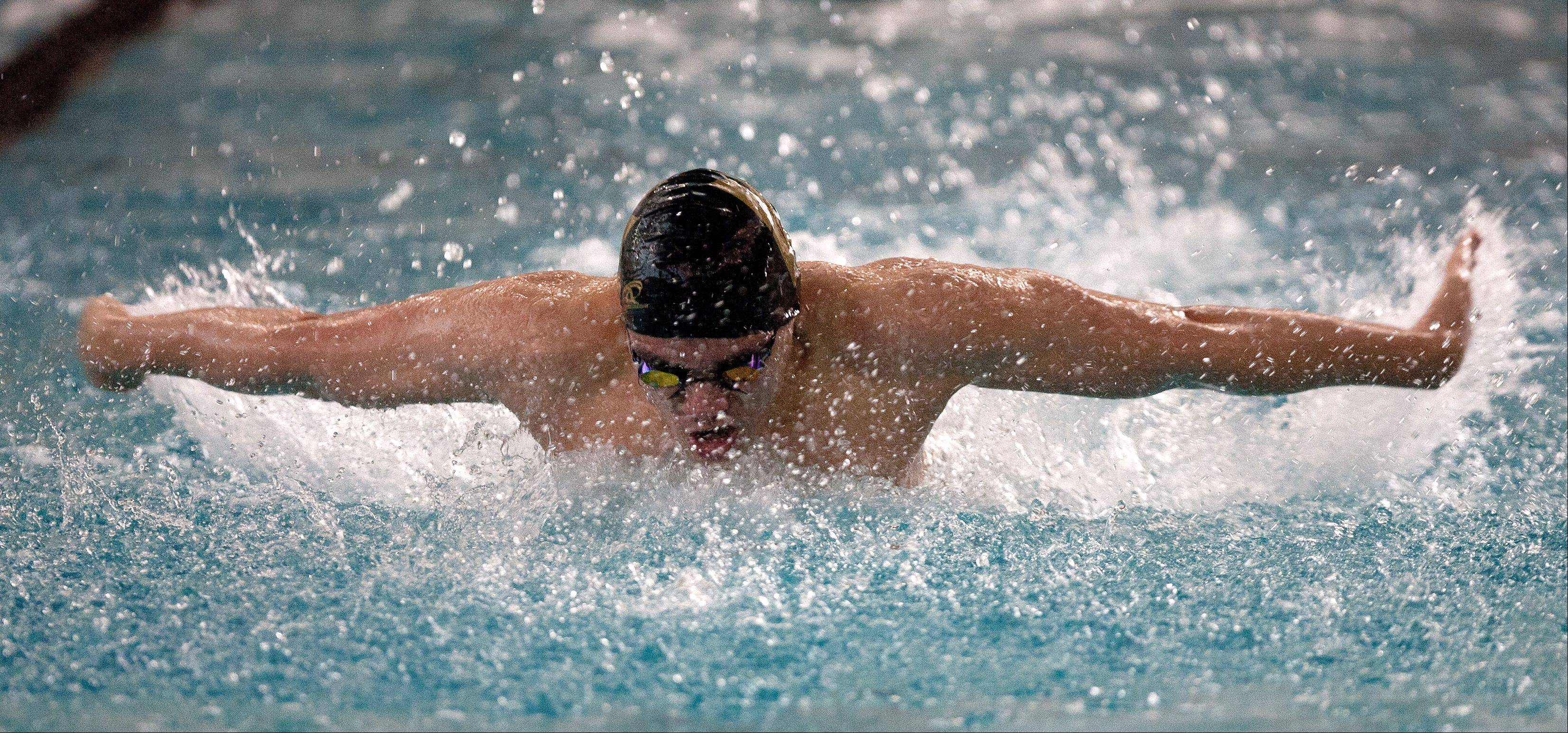 Stephen Ernst of Waubonsie Valley High School swims the 100 yard butterfly at the Mustang Swim and Dive Invite, hosted by Metea Valley High School.
