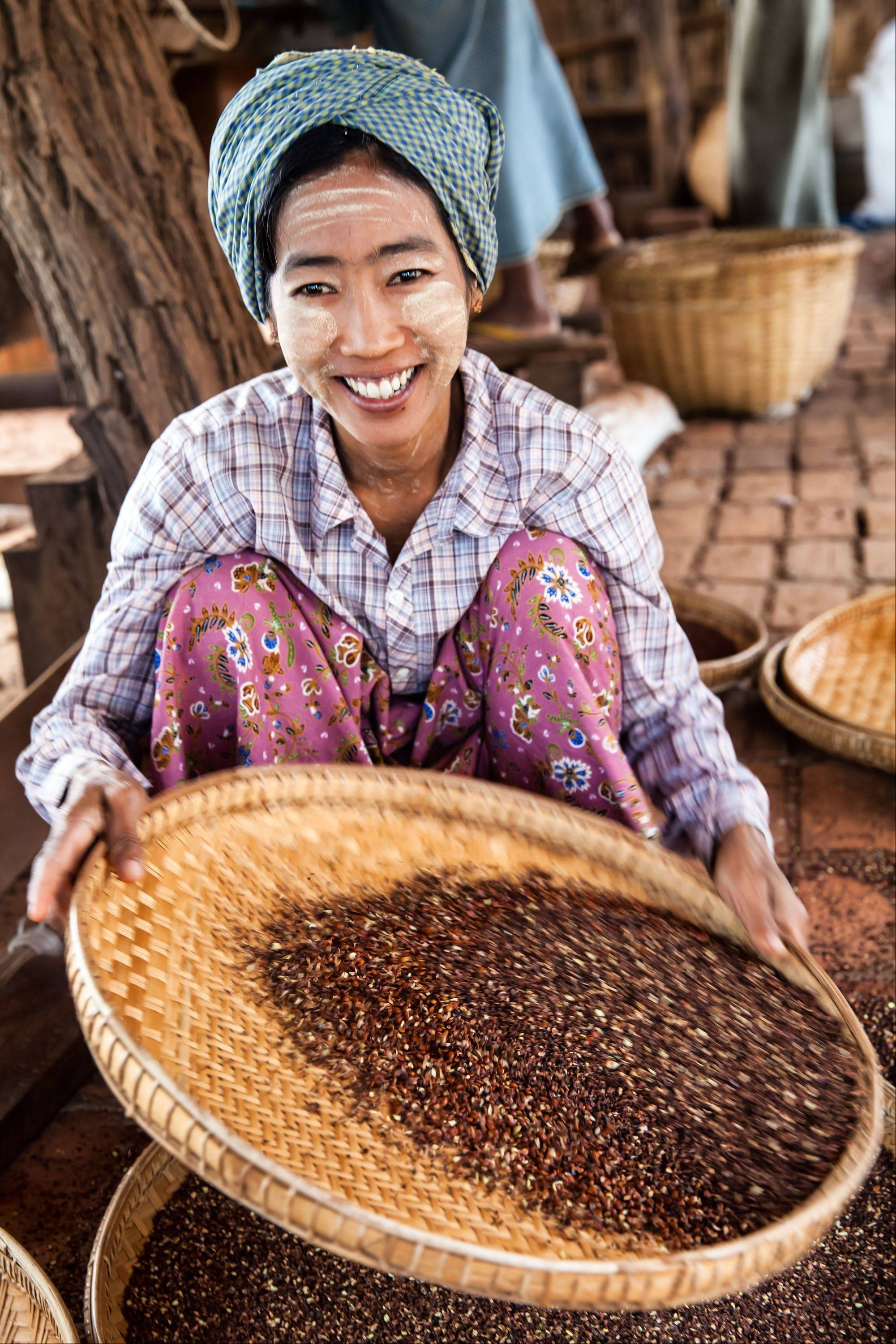 A woman sifts plum seeds used in the manufacture of herbal heart medicine, in Phwarsaw Village in Bagan, Myanmar.