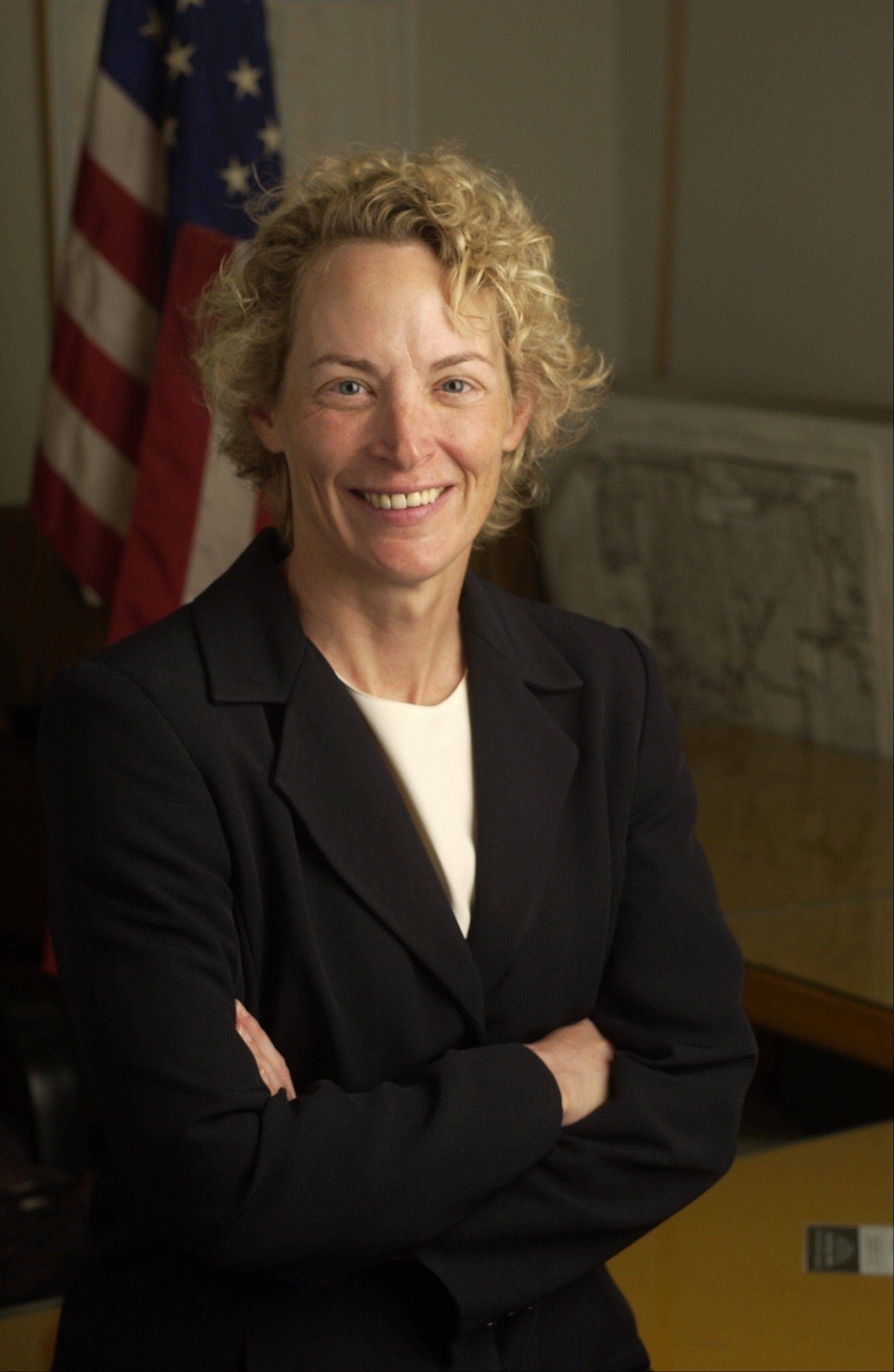 Democratic State Rep. Elaine Nekritz of Northbrook