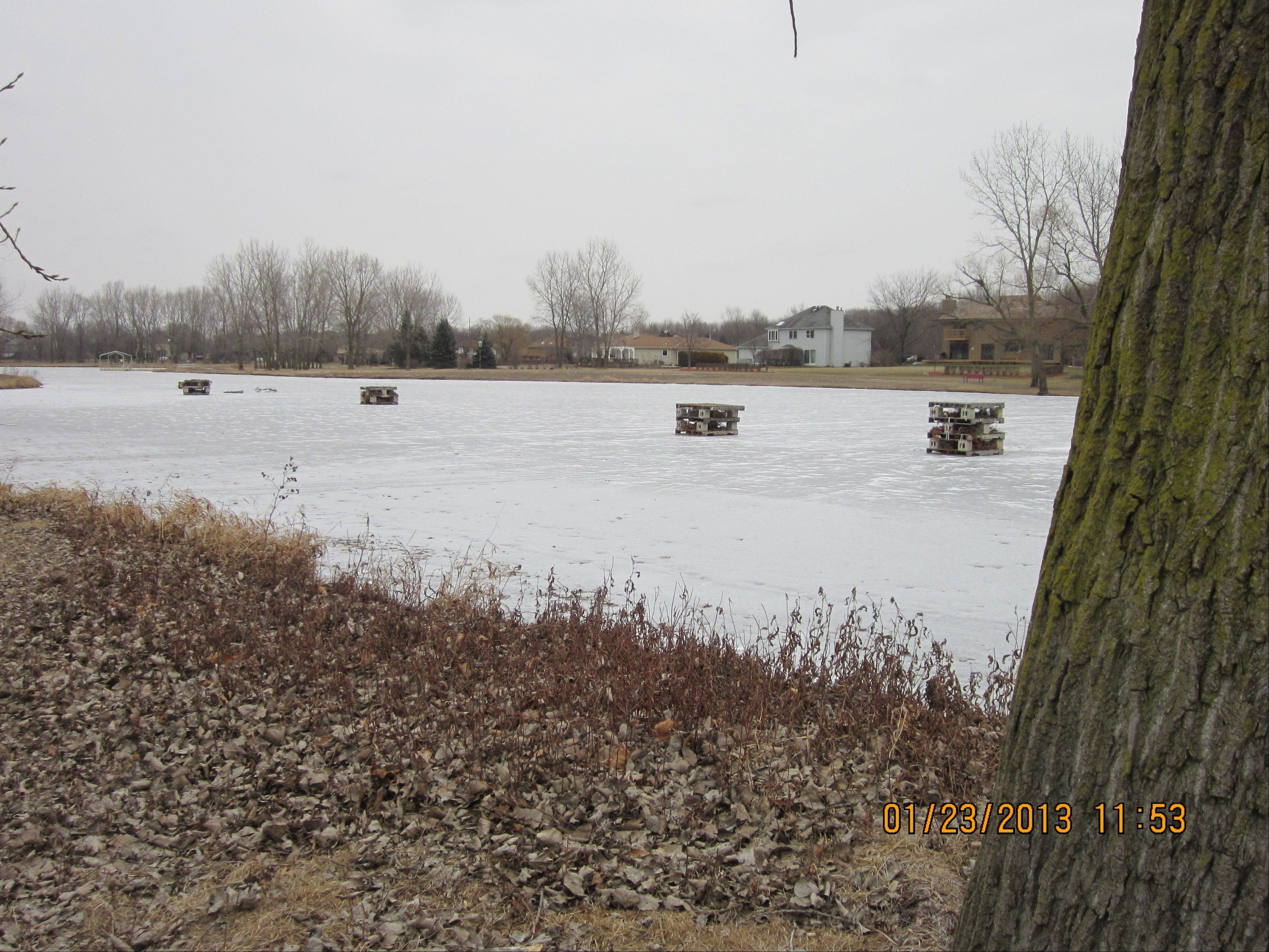 Fish cribs sit on the ice at Beaver Pond.