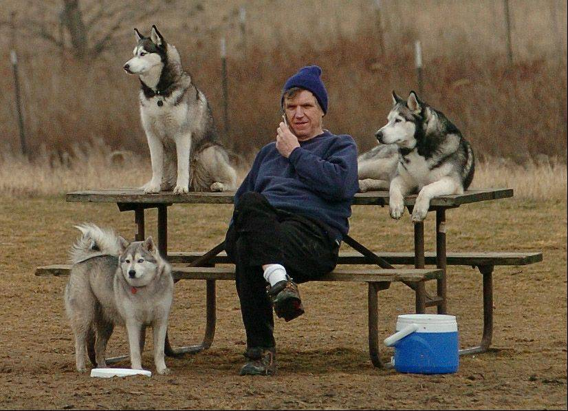 Mike Burke of Vernon Hills enjoys the unseasonably warm weather Tuesday while sitting with his Huskies at the dog exercise area in the Lake County Forest Preserves along Route 176 east of Wauconda. He brings them there six times a week, rain or shine.