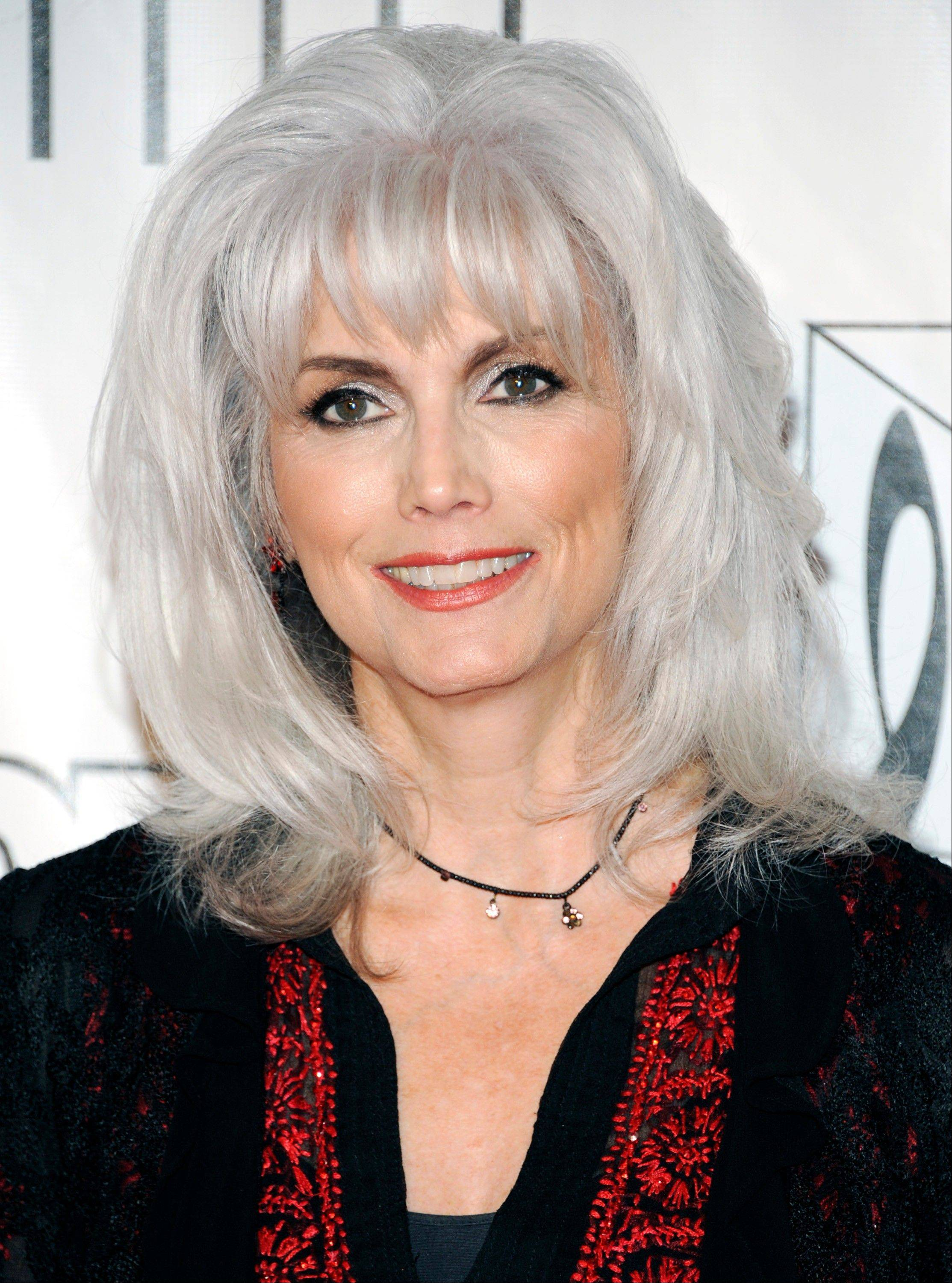 On Wednesday, prosecutors charged Emmylou Harris with misdemeanor hit-and-run for leaving an Oct. 1 accident on a Los Angeles freeway without exchanging info with another driver.