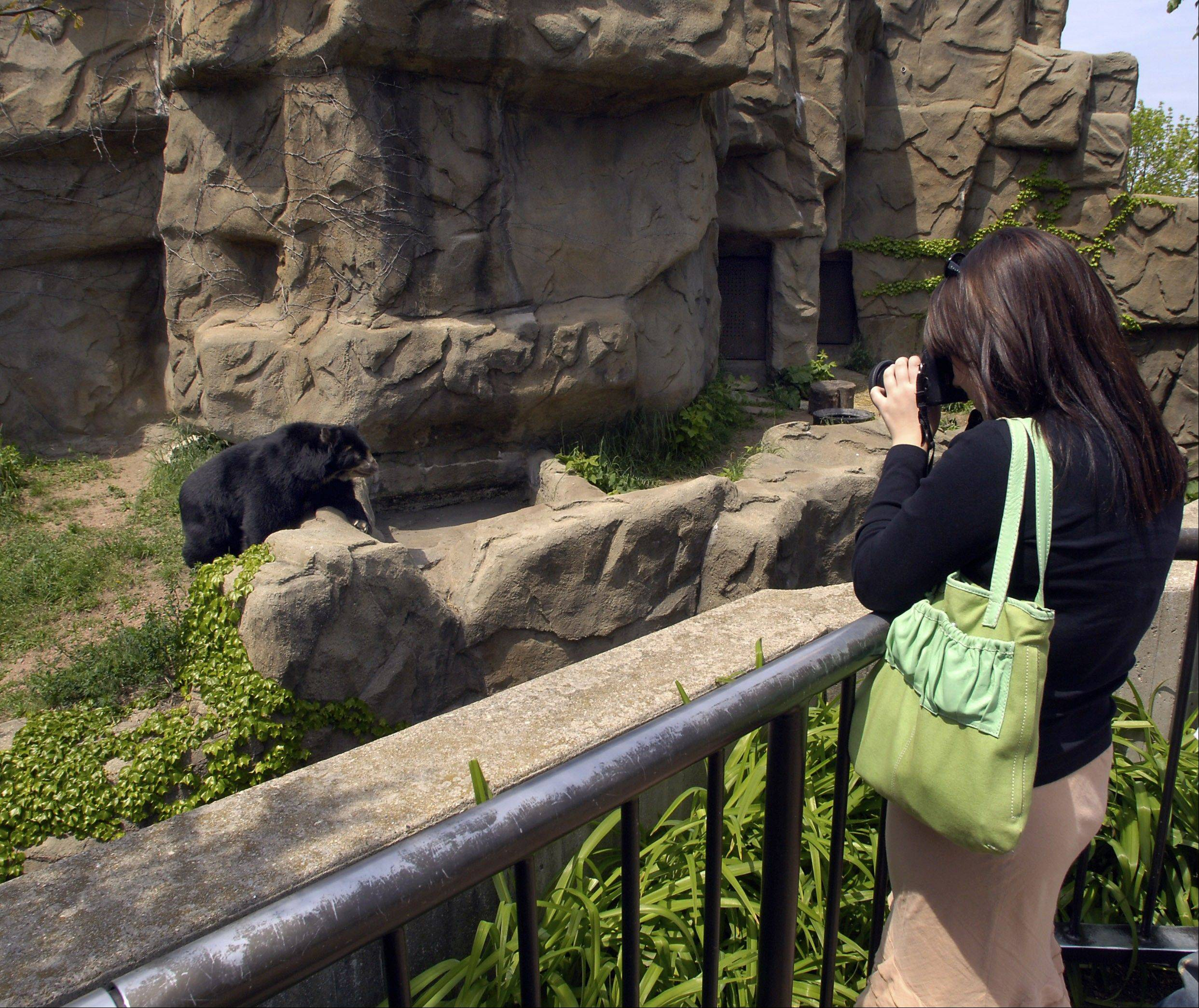 Lincoln Park Zoo in Chicago had 3.5 million visitors in 2012.