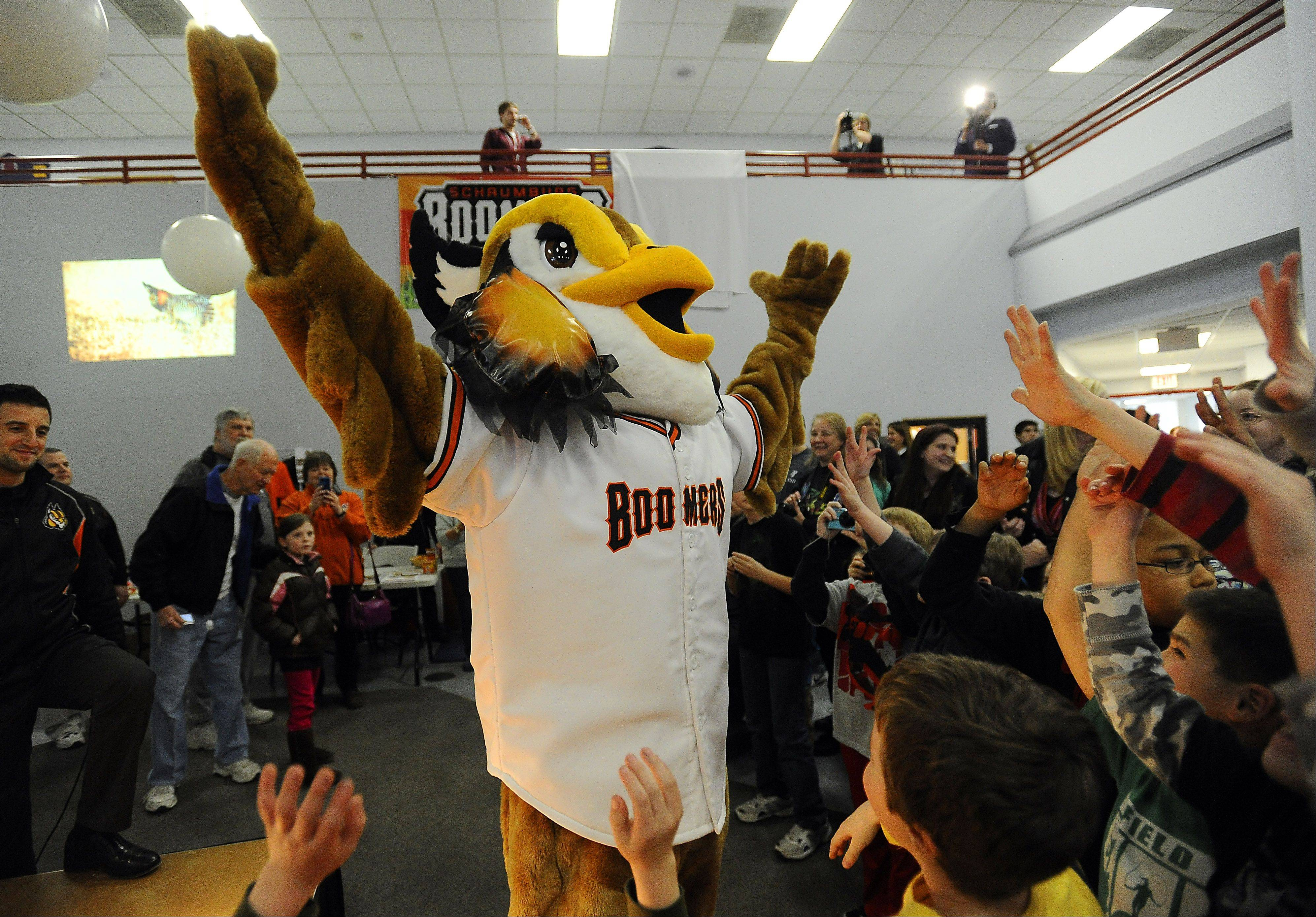 """Coop,"" the Schaumburg Boomers' mascot, at his introduction last April. The Boomers will audition candidates to fill Coop's suit March 16."