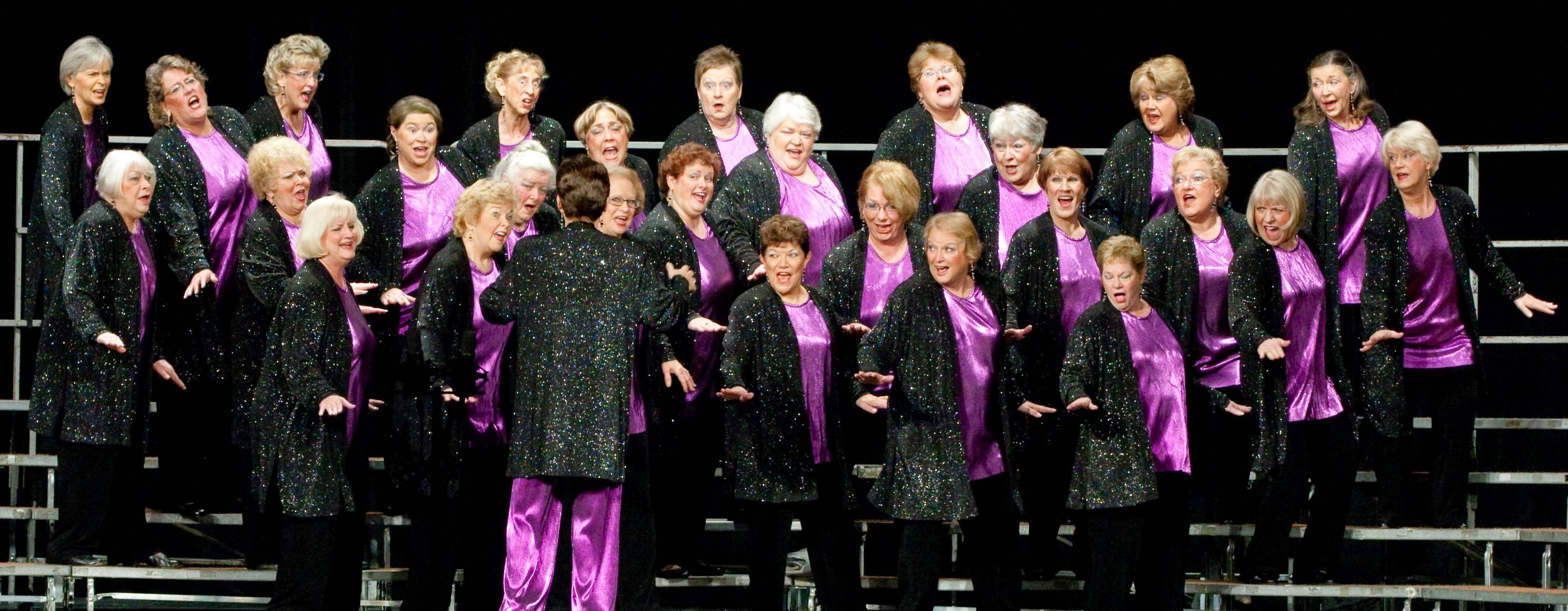 VVC Chorus at competition in Hershey, PA, November, 2011