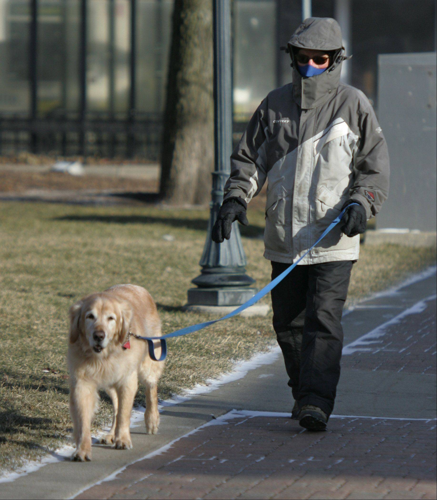 Jim Murphy, of Libertyville, is bundled up as he walks his dog, Edison, in frigid weather at Cook Memorial Park in Libertyville.