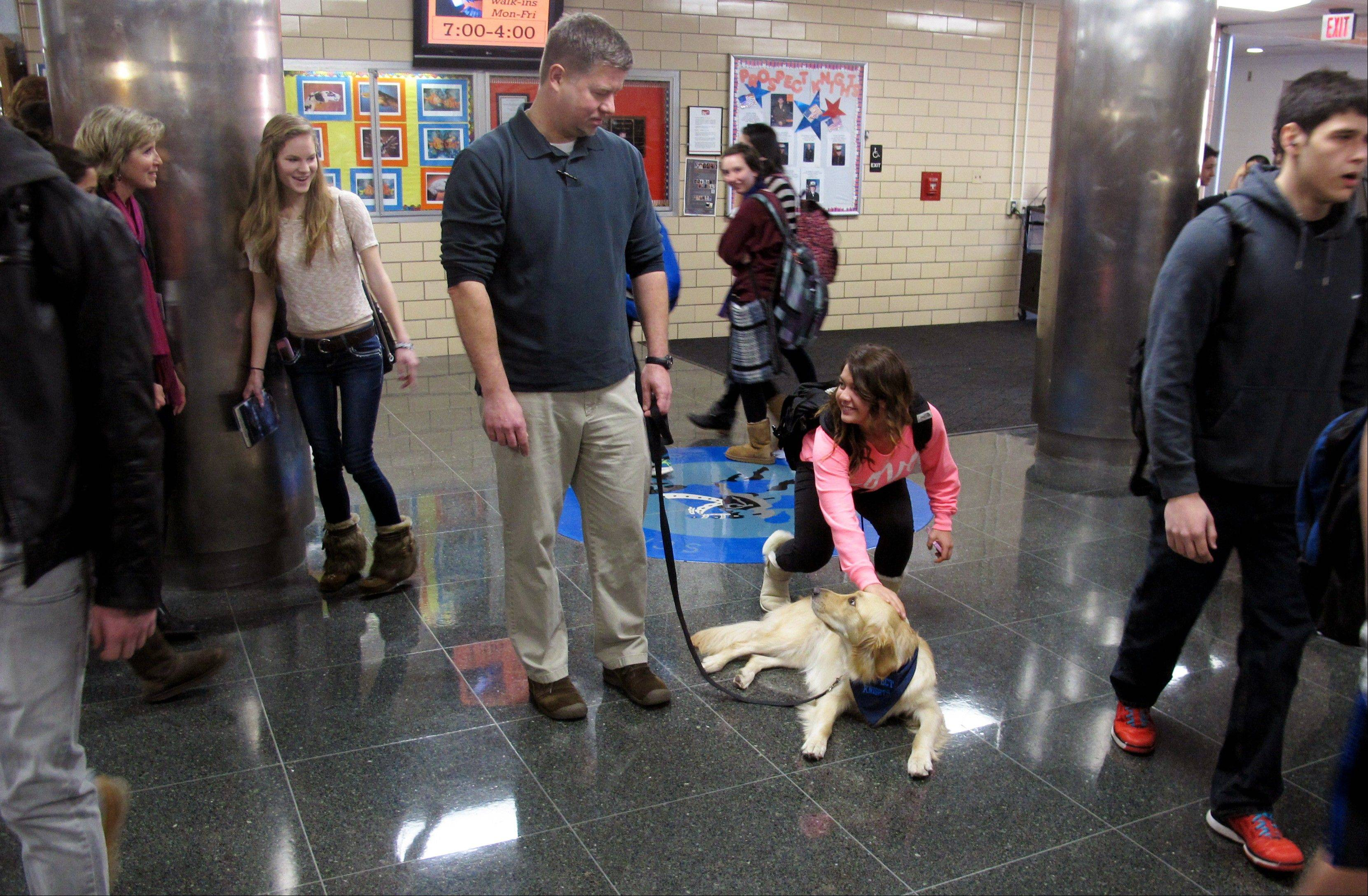 "Douglas Berg, a social worker at Prospect High School, watches as a student pets Junie, the school's ""therapy dog."" Stress, anxiety and panic attacks are on the rise at many U.S. high schools, due to heightened academic expectations and troubles at home made worse by the shaky economy."