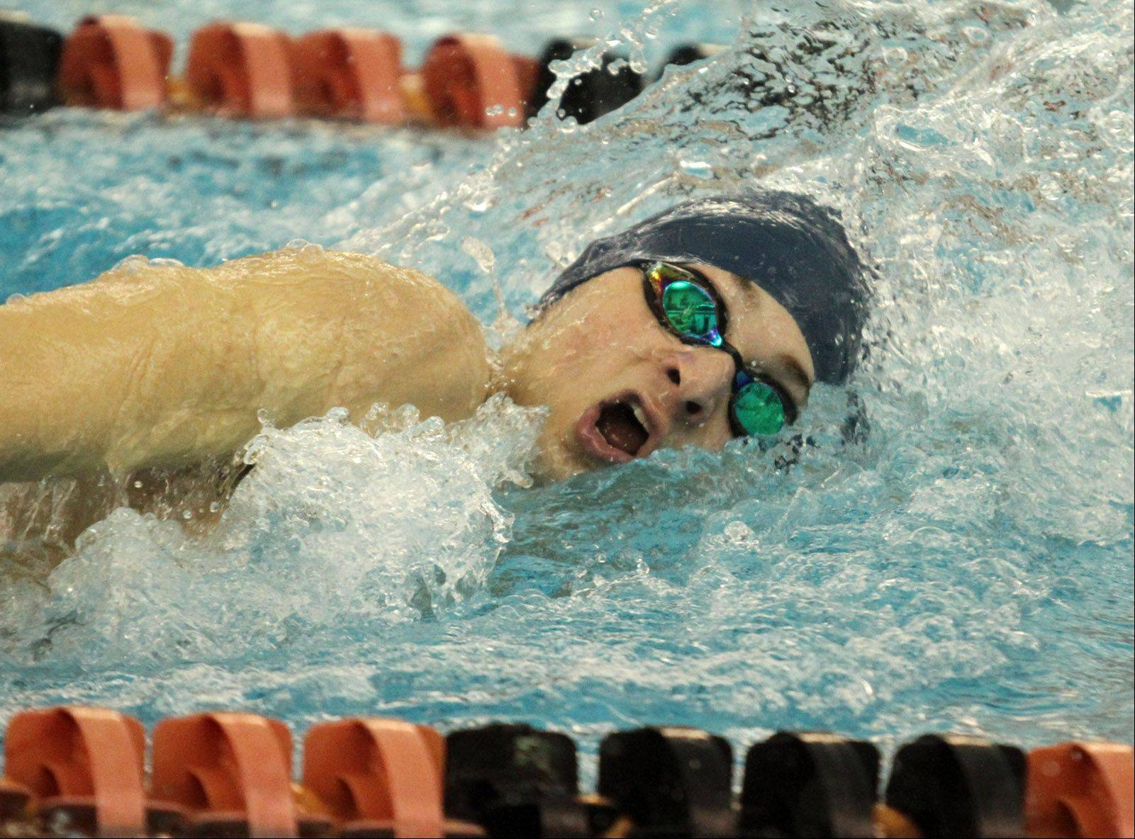 Prospect's Andrew Younger completes in the 200-yard freestyle in the Mid-Suburban League meet at Barrington on Saturday.