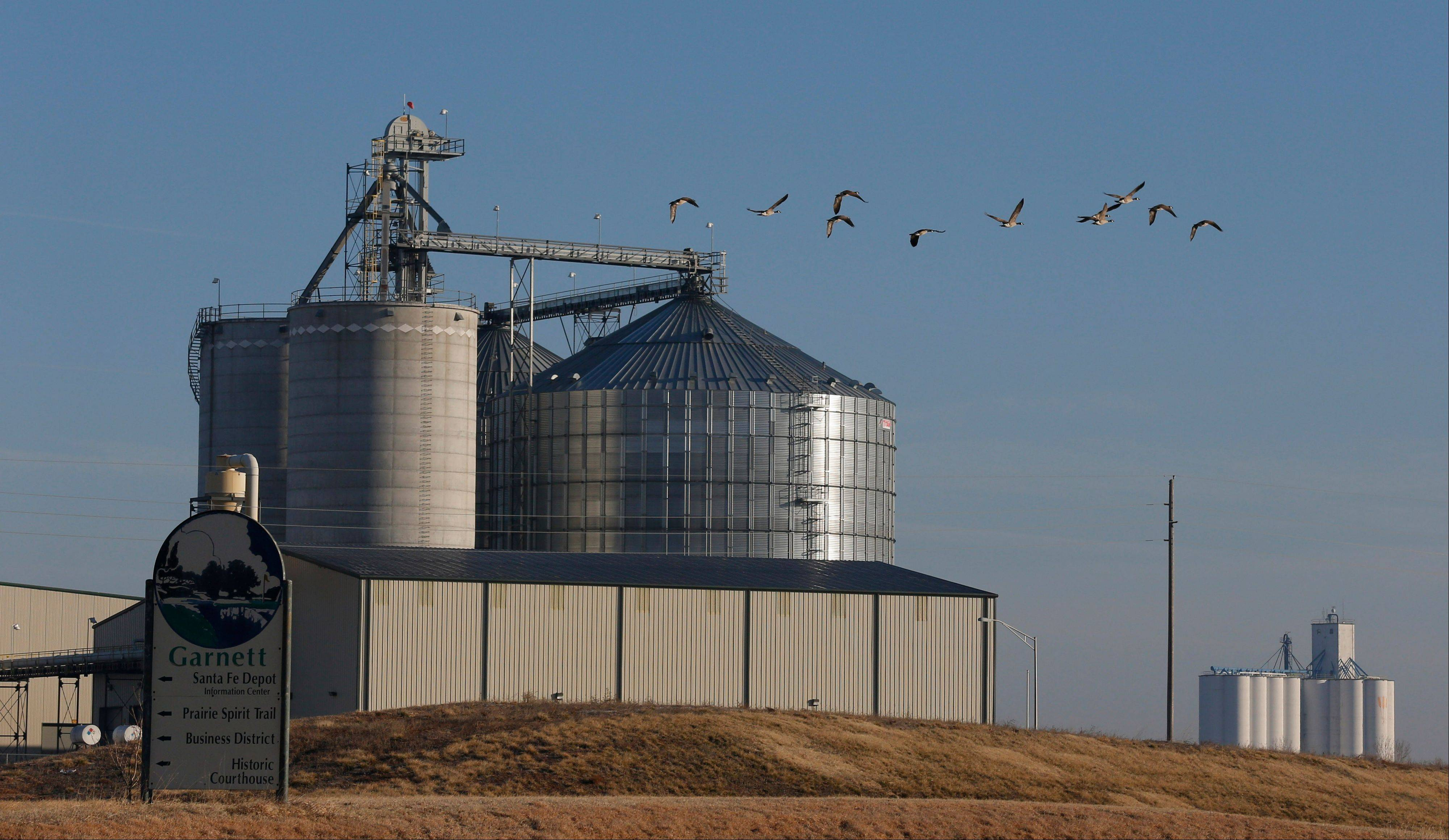 Geese fly by the East Kansas Agri-Energy ethanol plant in Garnett, Kan., that suspended production last year. Corn growers had high hopes going into the 2012 planting season but the drought that began last spring hit the corn crop hard. As a result, corn prices skyrocketed and corn has become scarce in some regions, forcing 20 ethanol plants around the country to halt production.