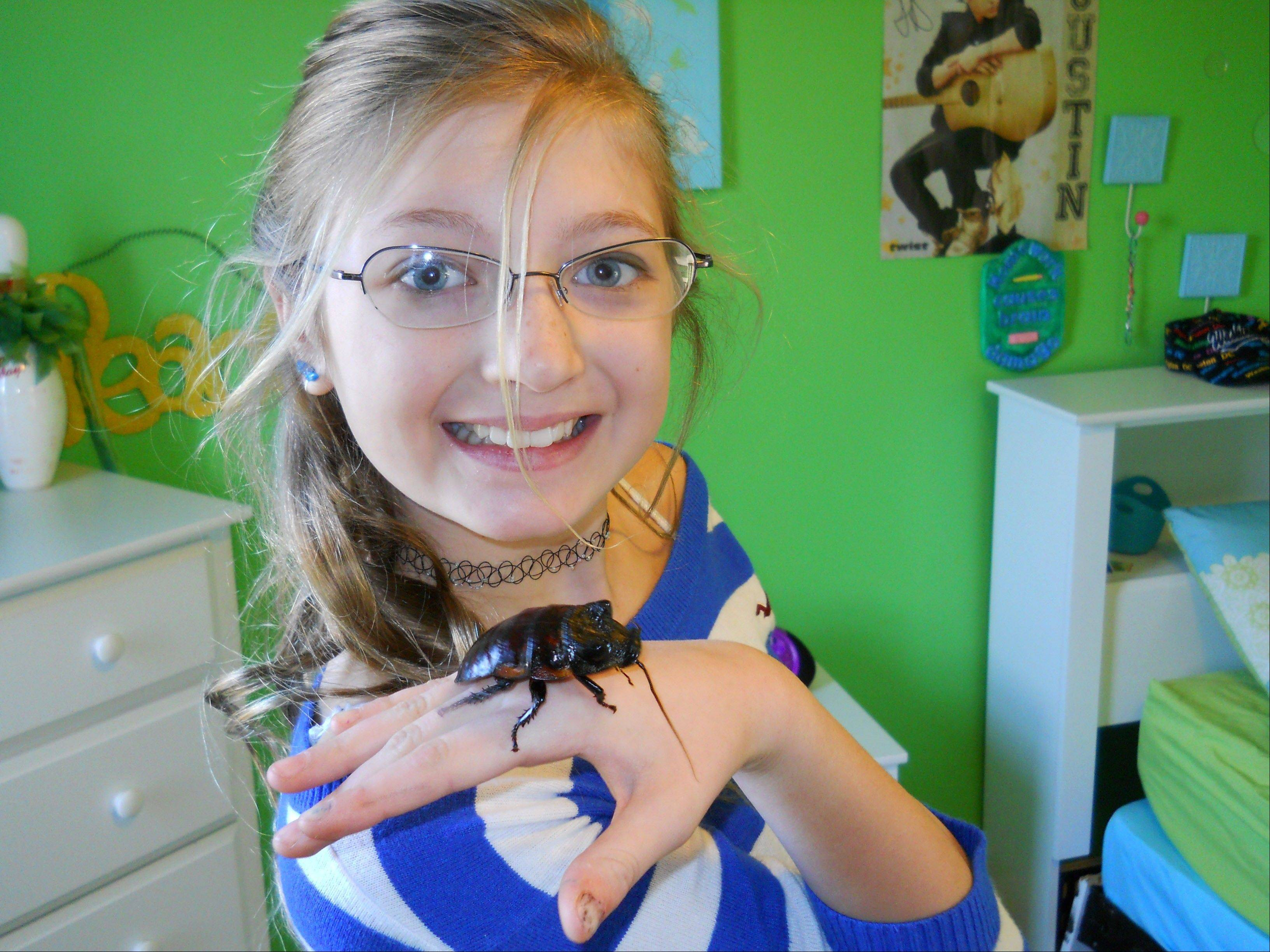 Gwynevere McMonigle with Dr. Phil, her pet hissing cockroach, Gromphadorhina portentosa. The most common pet roach, the hissing cockroach, is two to three inches long, and its name comes from the sound the insects make when disturbed.