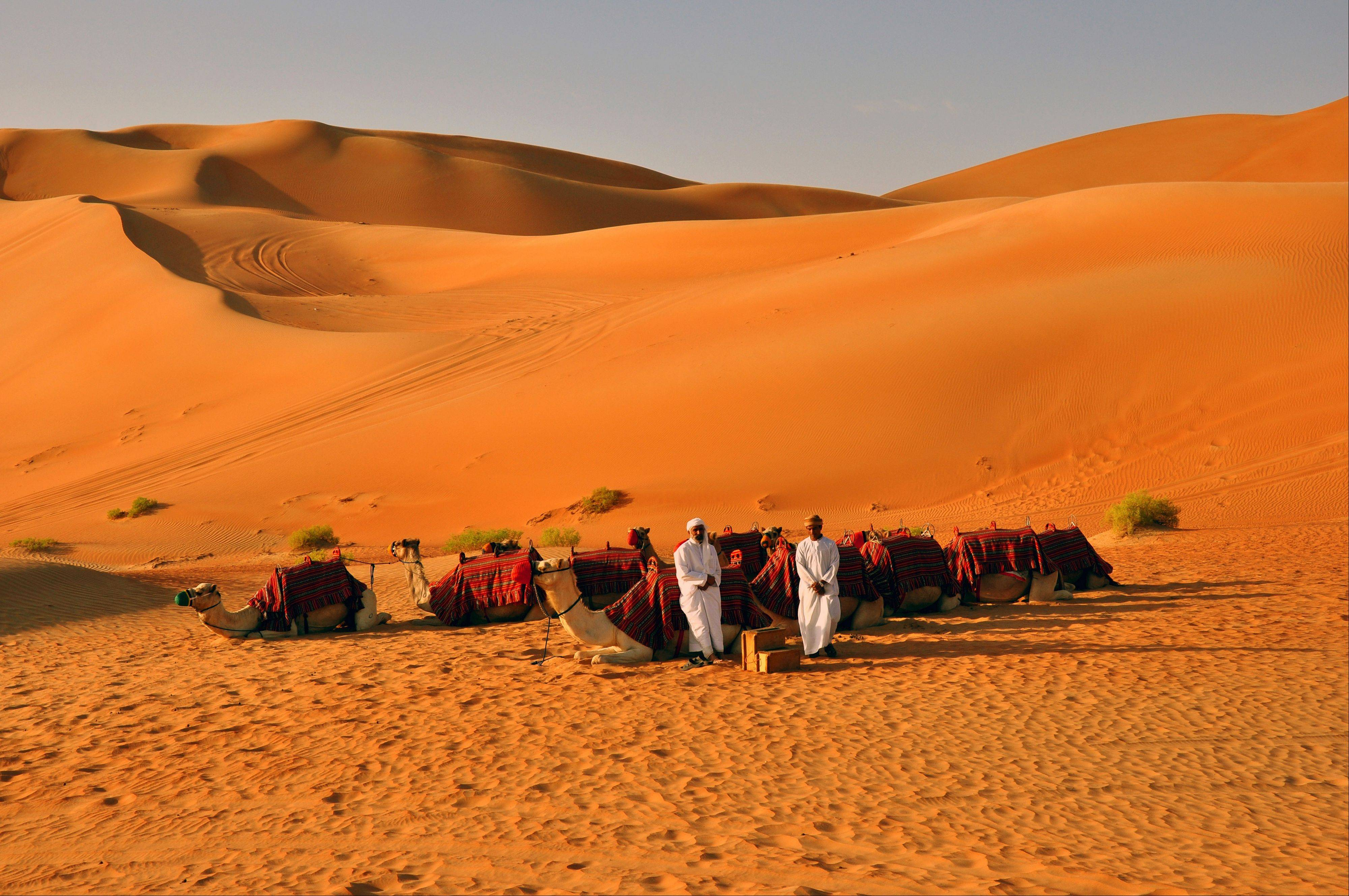 Dunes rise over valleys in the Liwa Desert, part of the world's largest uninterrupted sand desert.