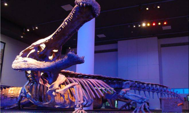 "A ""SuperCroc"" exhibit featuring 40-foot crocodiles that lived 110 million years ago is headed in early May to Gail Borden Public Library in Elgin."