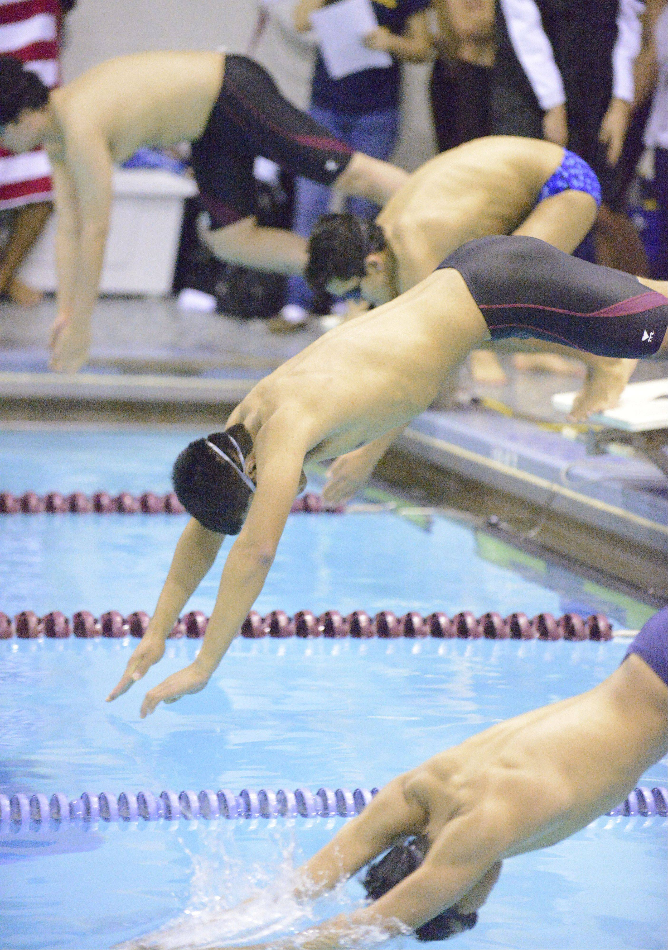 Eduardo Perez, a Elgin High School senior, has accepted a four-year full scholarship to Stanford University. He is among a few seniors who this year were instrumental in bringing a boys swim team back to Elgin High.