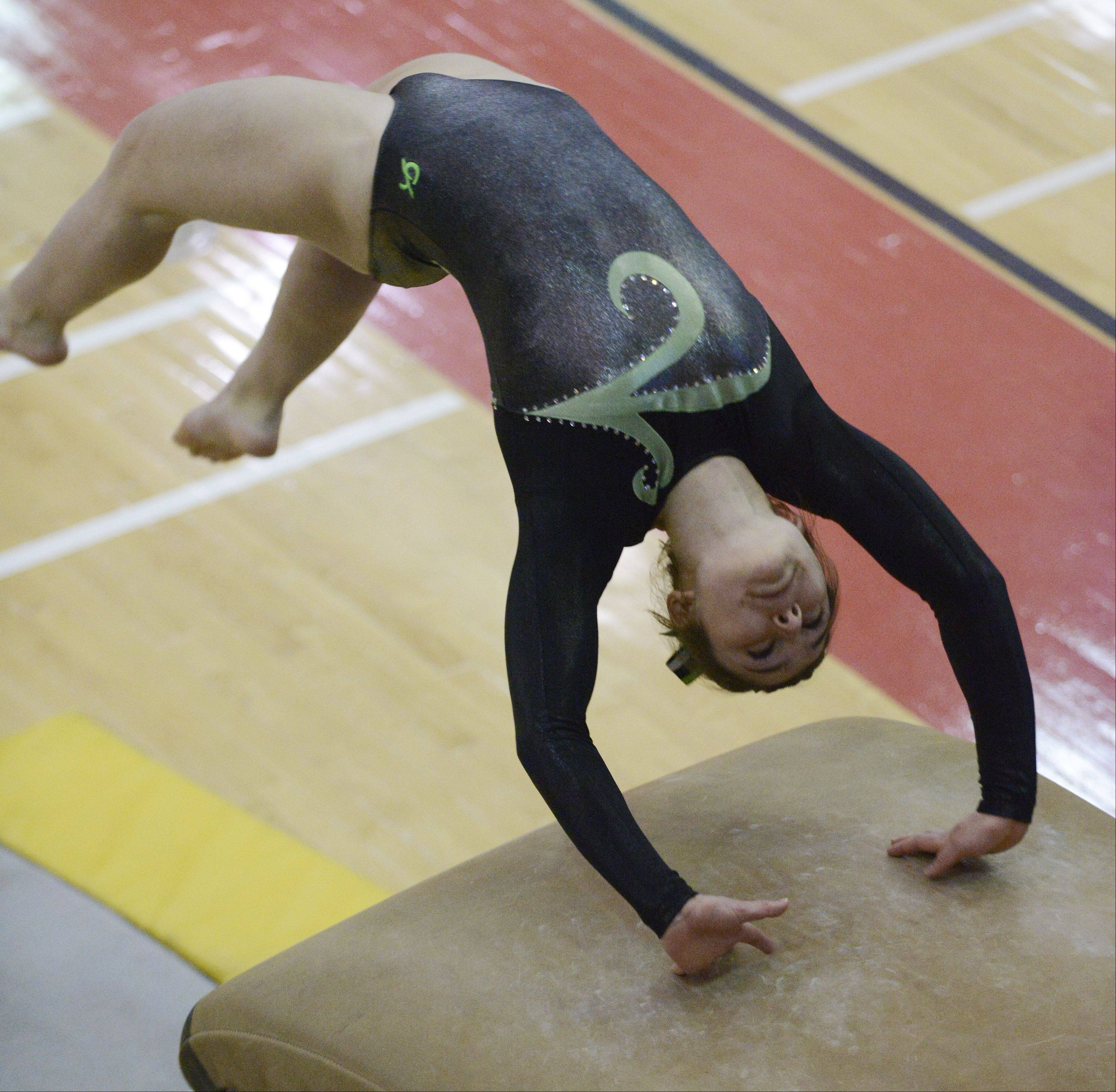 Elk Grove�s Amelia Rafferty competes on vault during the girls gymnastics state finals at Palatine High School on Saturday.