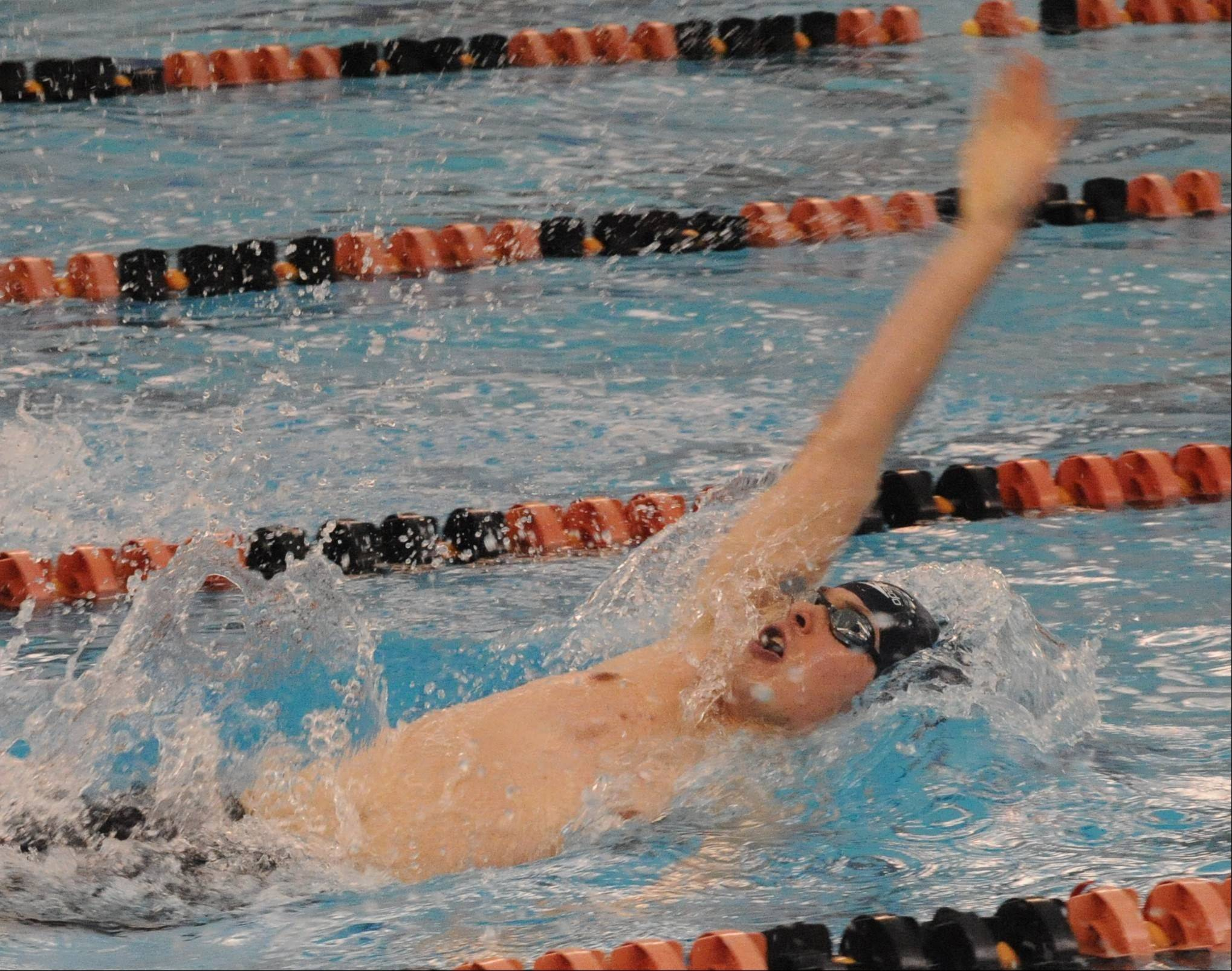 Cary-Grove senior Michael Hamann backstrokes toward victory in the 200-yard IM on Saturday at Barrington.
