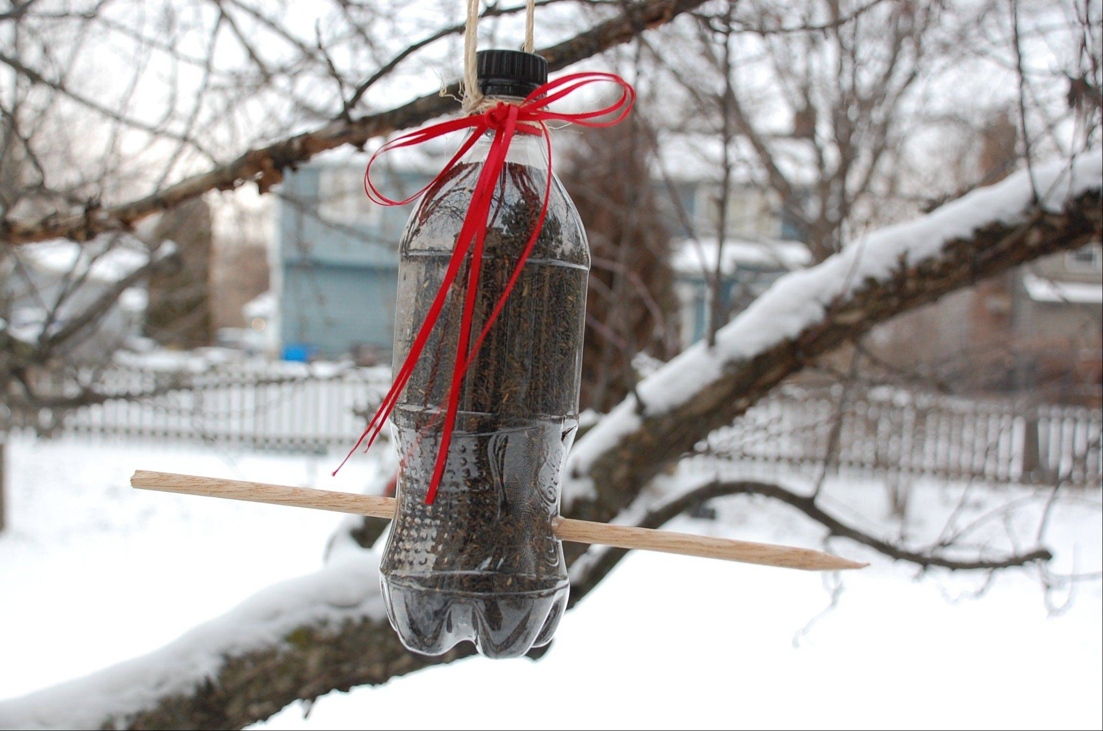 With a few craft supplies, you can create a bird feeder and attract a little wildlife to your backyard.