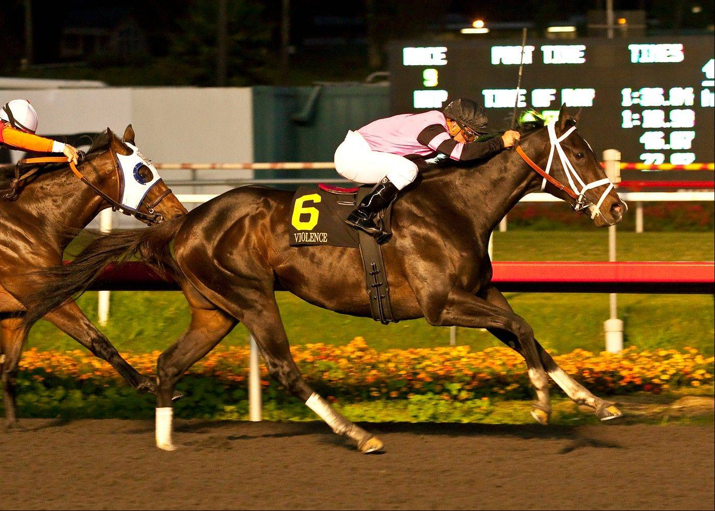FILE - In this Dec. 15, 2012 photo released by Benoit Photo, Violence with Javier Castellano up, right, is shown winning the Grade I $750,000 CashCall Futurity at Betfair Hollywood Park, Inglewood, Calif. Todd Pletcher's promising 3-year-olds pick up the pace this weekend on the road to the Kentucky Derby, with Violence set for the Fountain of Youth and Palace Malice the Risen Star.