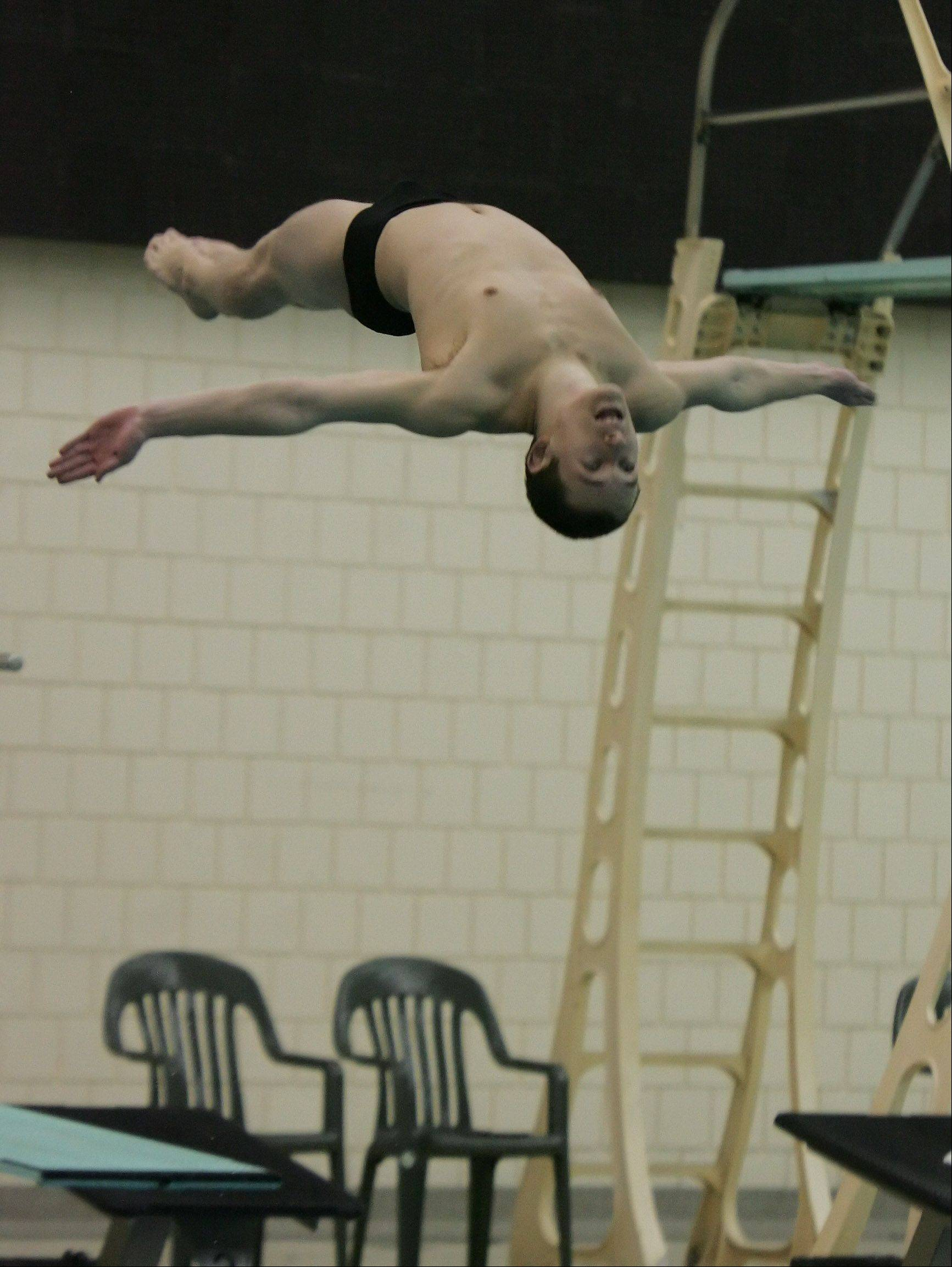 Stevenson senior James Lichtenstein takes the plunge in today�s diving state preliminaries at New Trier. He�ll be joined by sophomore teammate Blake Ripes, who won the sectional meet Saturday at Vernon Hills.