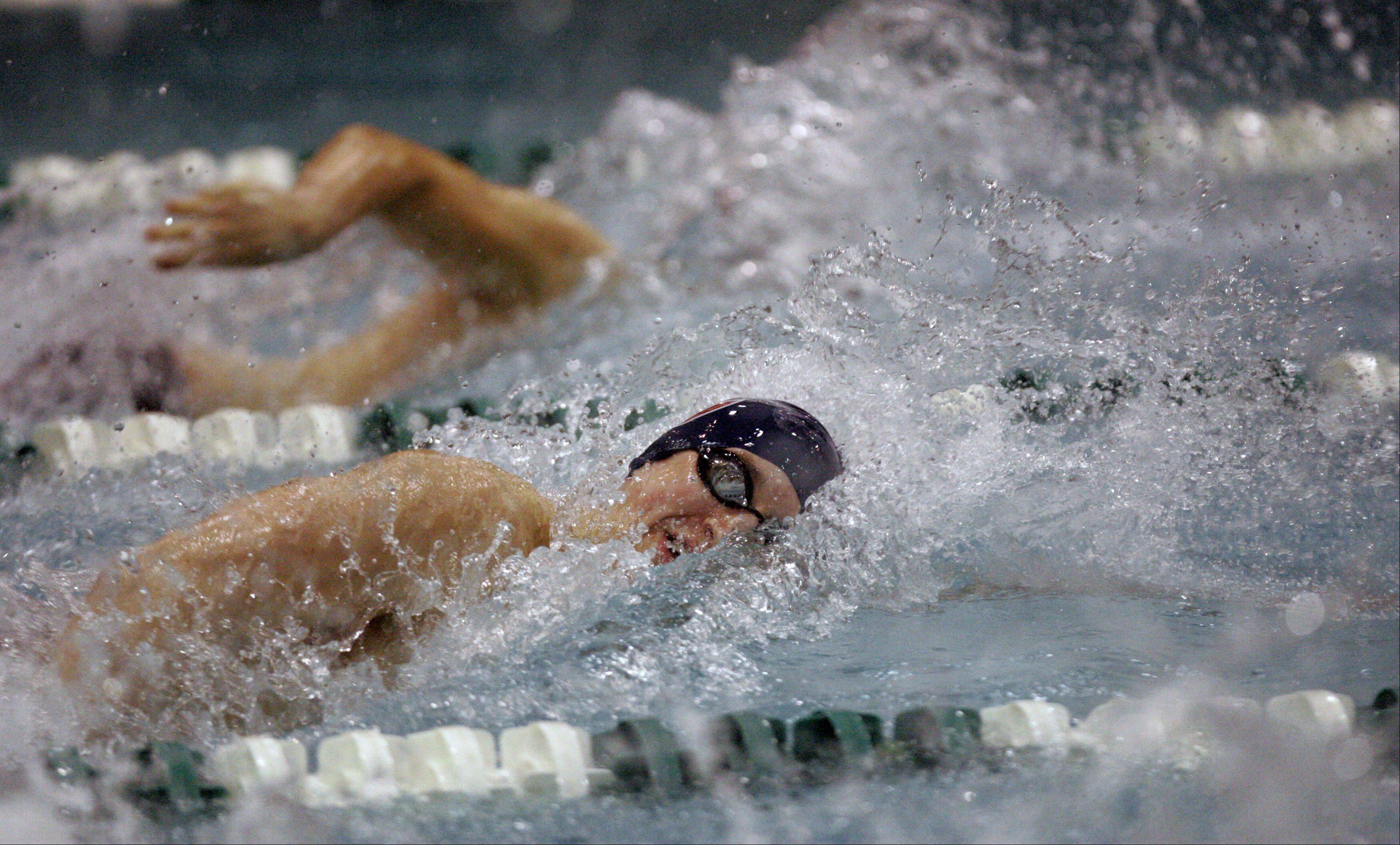 Alex Shozda of Conant competes in the 100-yard freestyle during the boys swimming state meet prelimiinaries at New Trier High School on Friday.