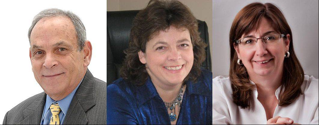 Marty Waitzman, Linda Moore and Pam Fender, all GOP candidates for Grafton Township supervisor