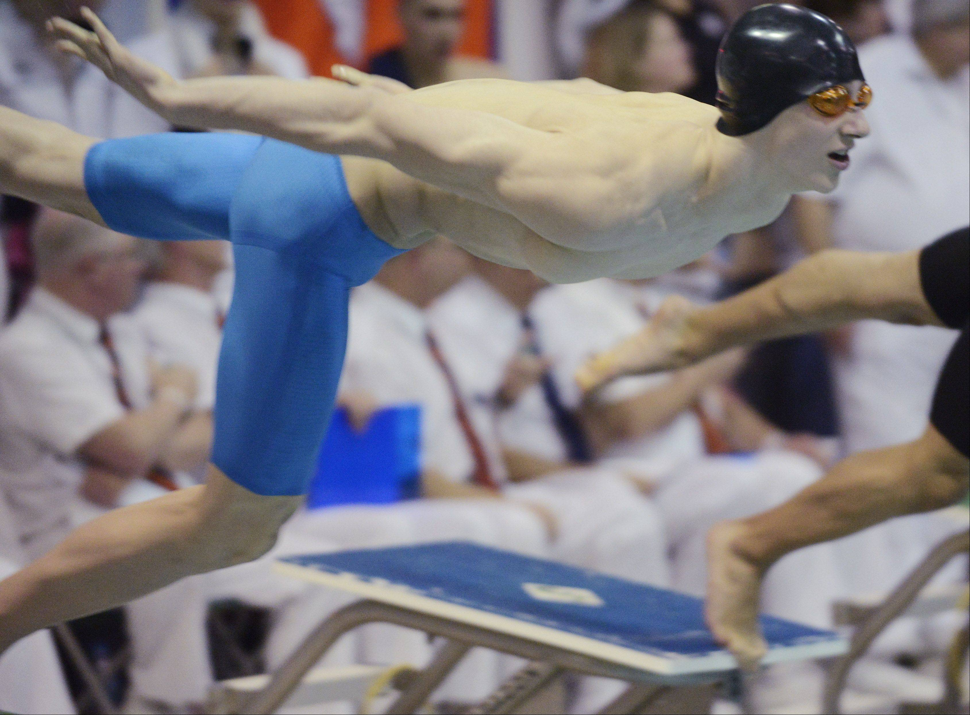 Images: Boys State Swimming Finals