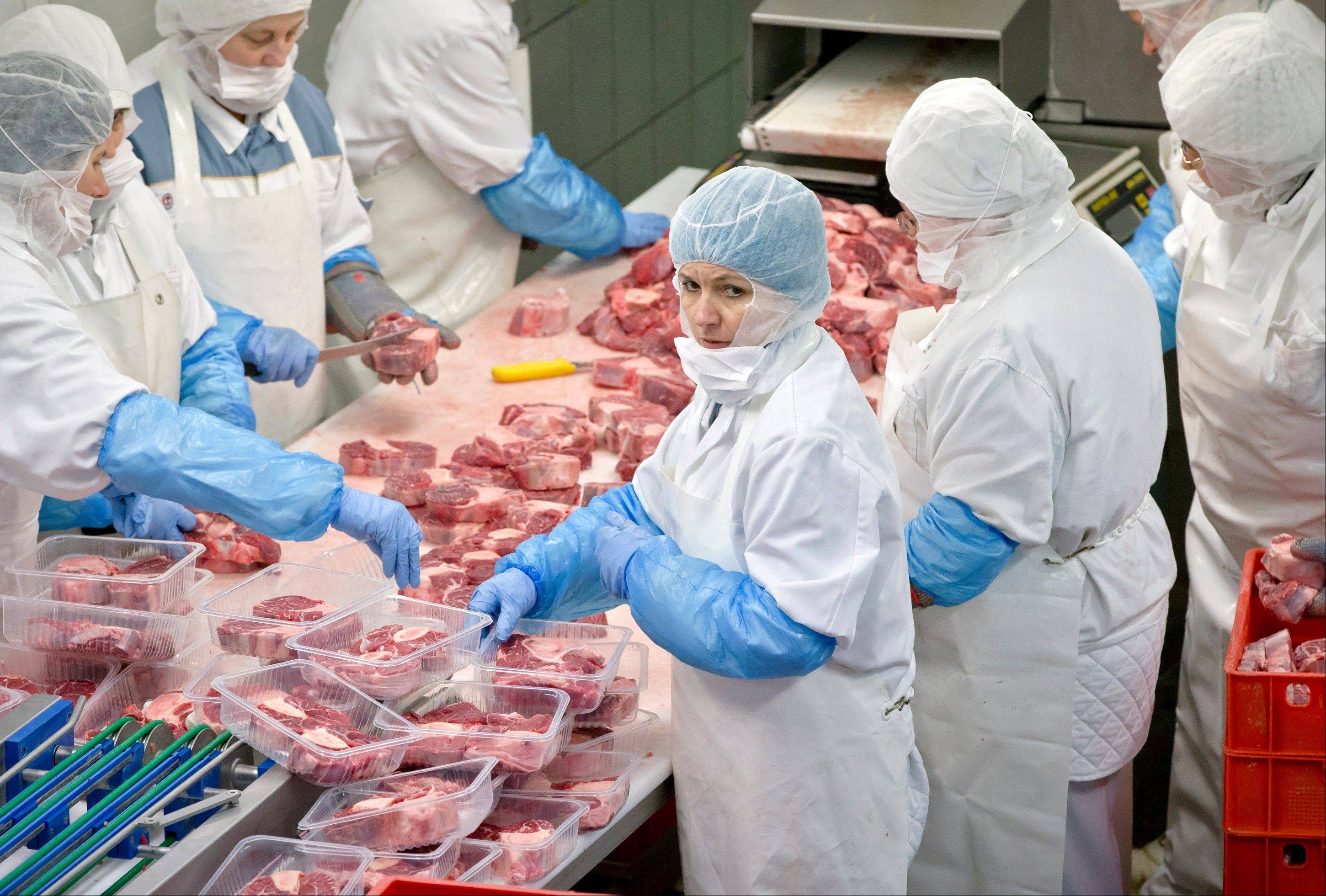 Workers handle meat at the Doly-Com abattoir, one of the two units checked by Romanian authorities in the horse meat scandal, in the village of Roma, northern Romania,