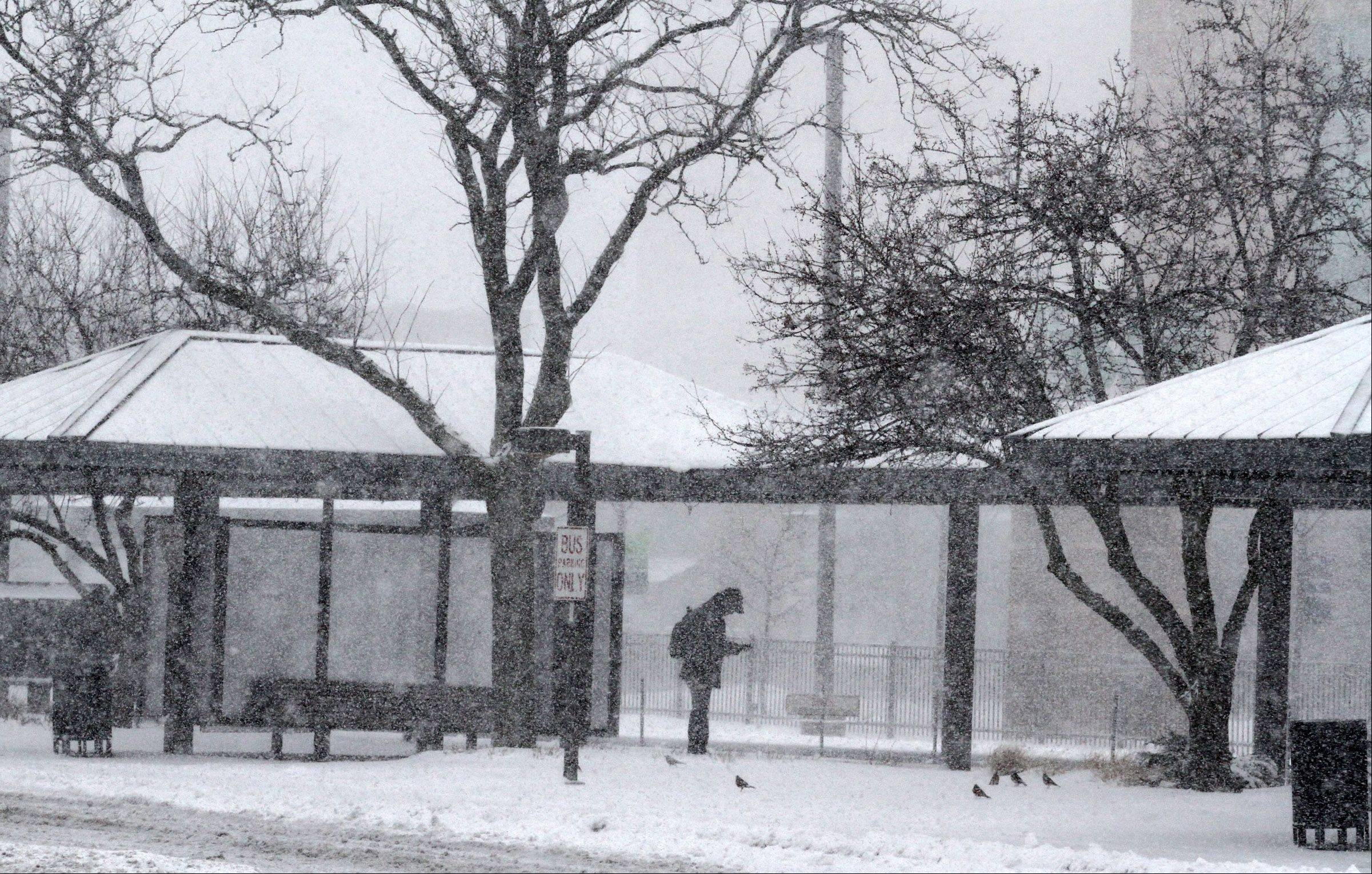 A commuter waits for a bus in Des Plaines near the train station on Tuesday, February 26, 2013.