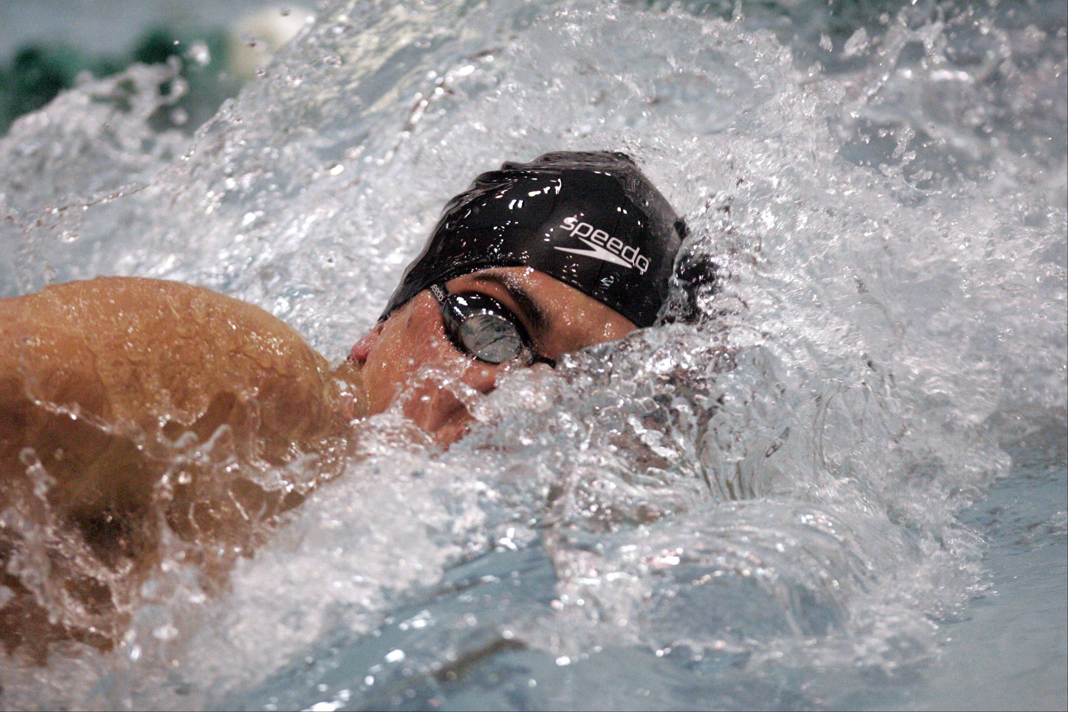 Barrington's Jack Strauss competes in the 100-yard freestyle during the IHSA State Swimming prelims Friday.