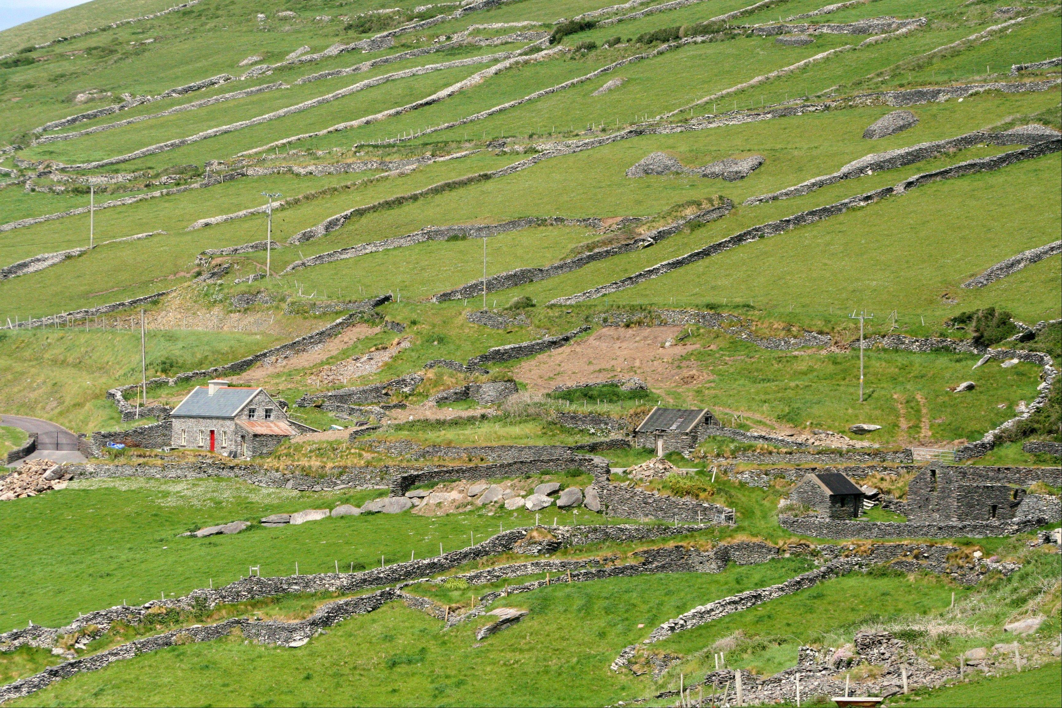 Stone walls on a hillside on the Dingle Peninsula, County Kerry, Ireland.