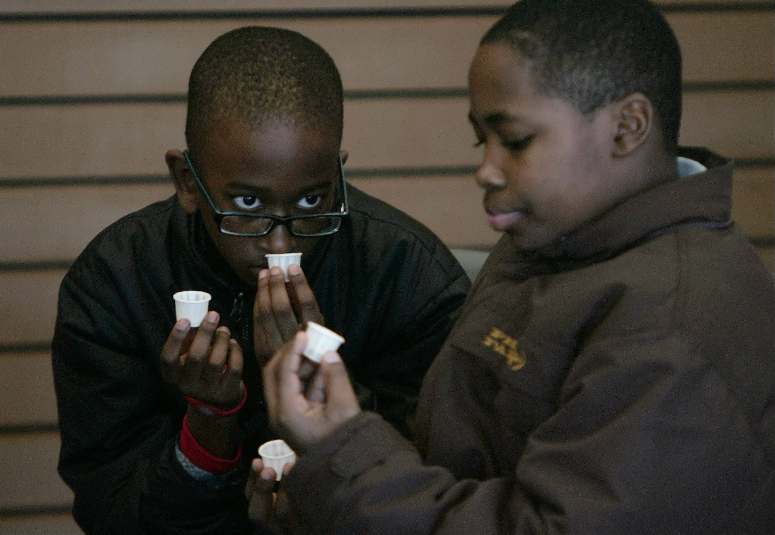 Solomon Morgan, 11, of Zion and Davonte Welch, 12, of Waukegan look at and smell maple syrup before it is cooked during the maple syrup hike Sunday at Ryerson Woods in Riverwoods. Nature enthusiasts learned how maple syrup is collected and made during a hike through the forest.