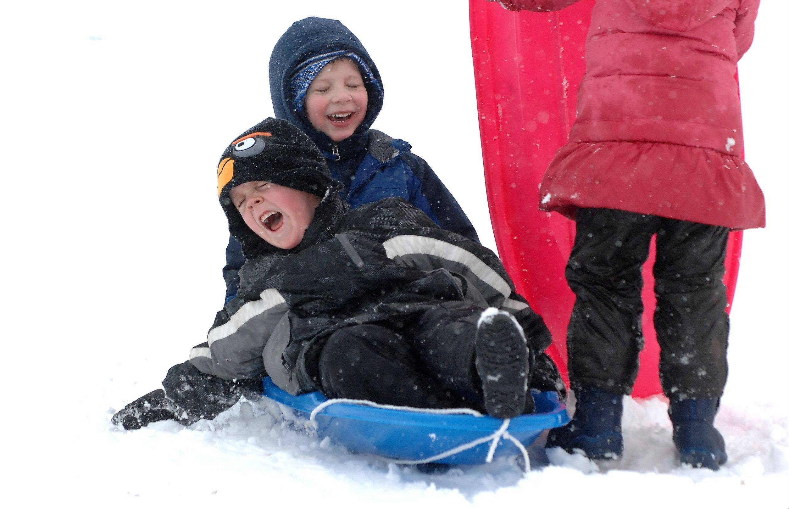 Jack Magee, 4, of Carpentersville, screams and tries to steer to keep from hitting someone while sledding with Jacob Jones, 5, of Gilberts, at Randall Oaks Park in West Dundee Wednesday.