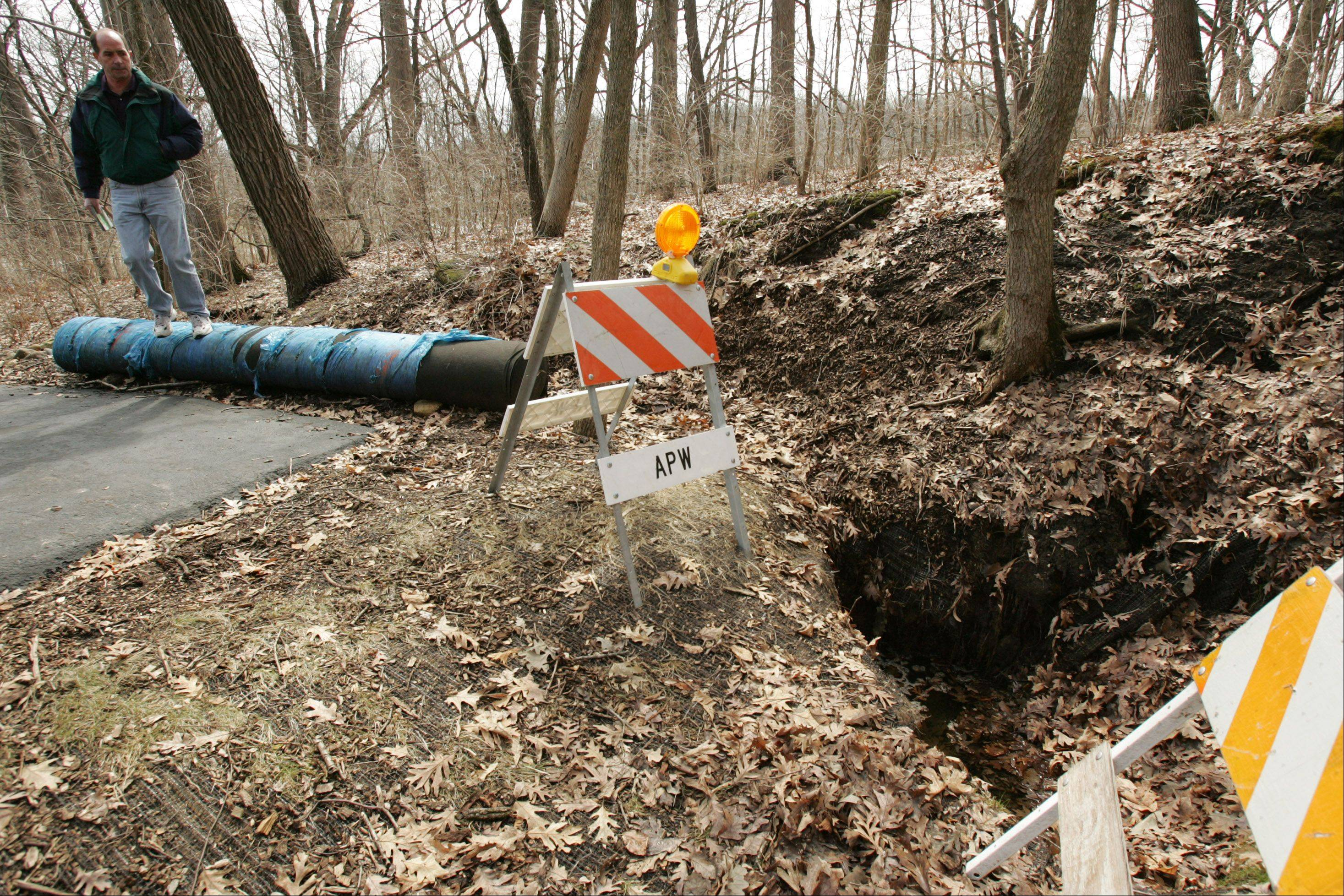 An 8-foot-by-8-foot sinkhole appeared on the property of Algonquin resident Tom Gamoe in 2008.