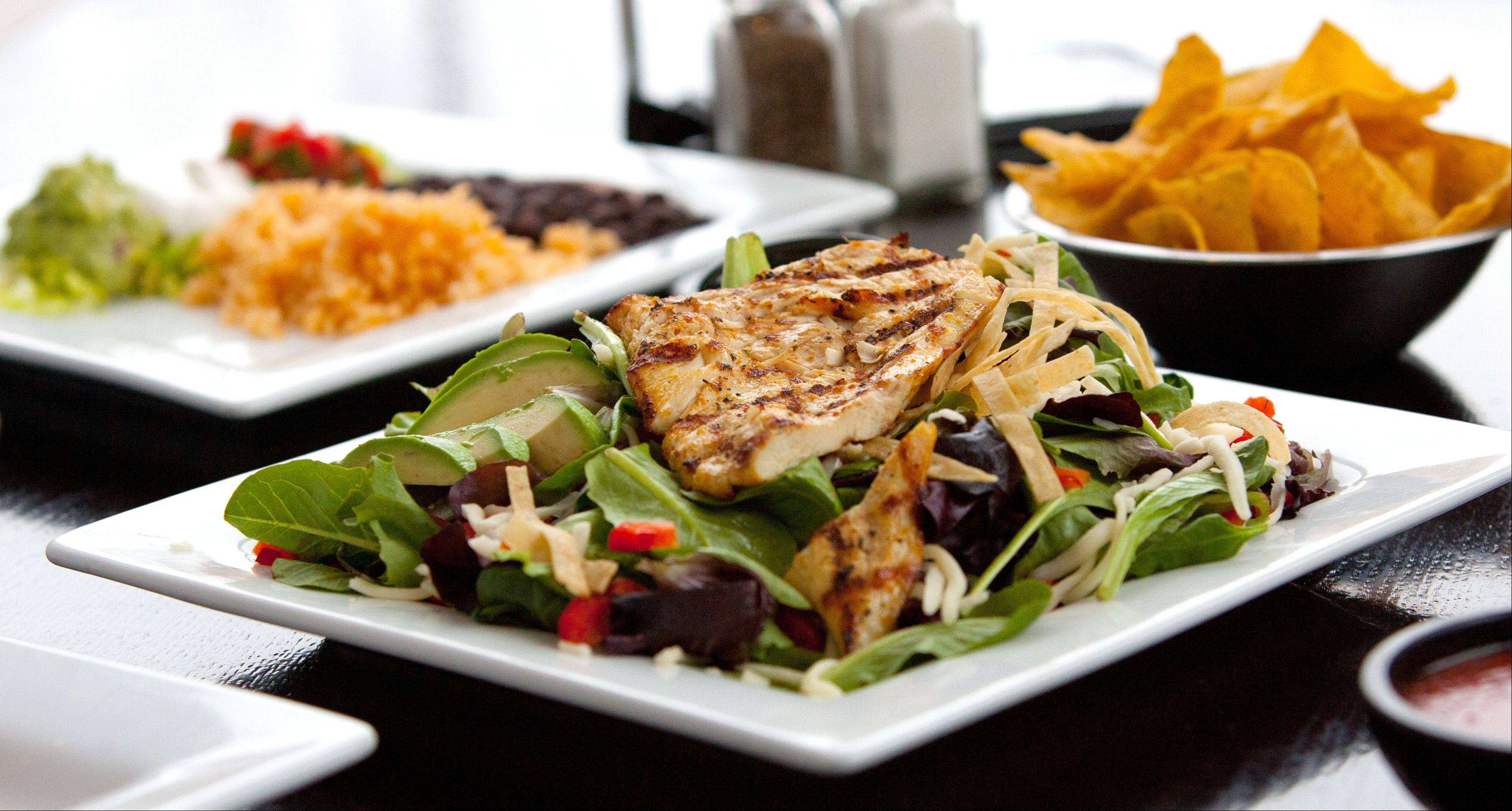 Grilled chicken breast salad is among the lighter menu items at Burrito Parrilla Mexicana in Lombard.