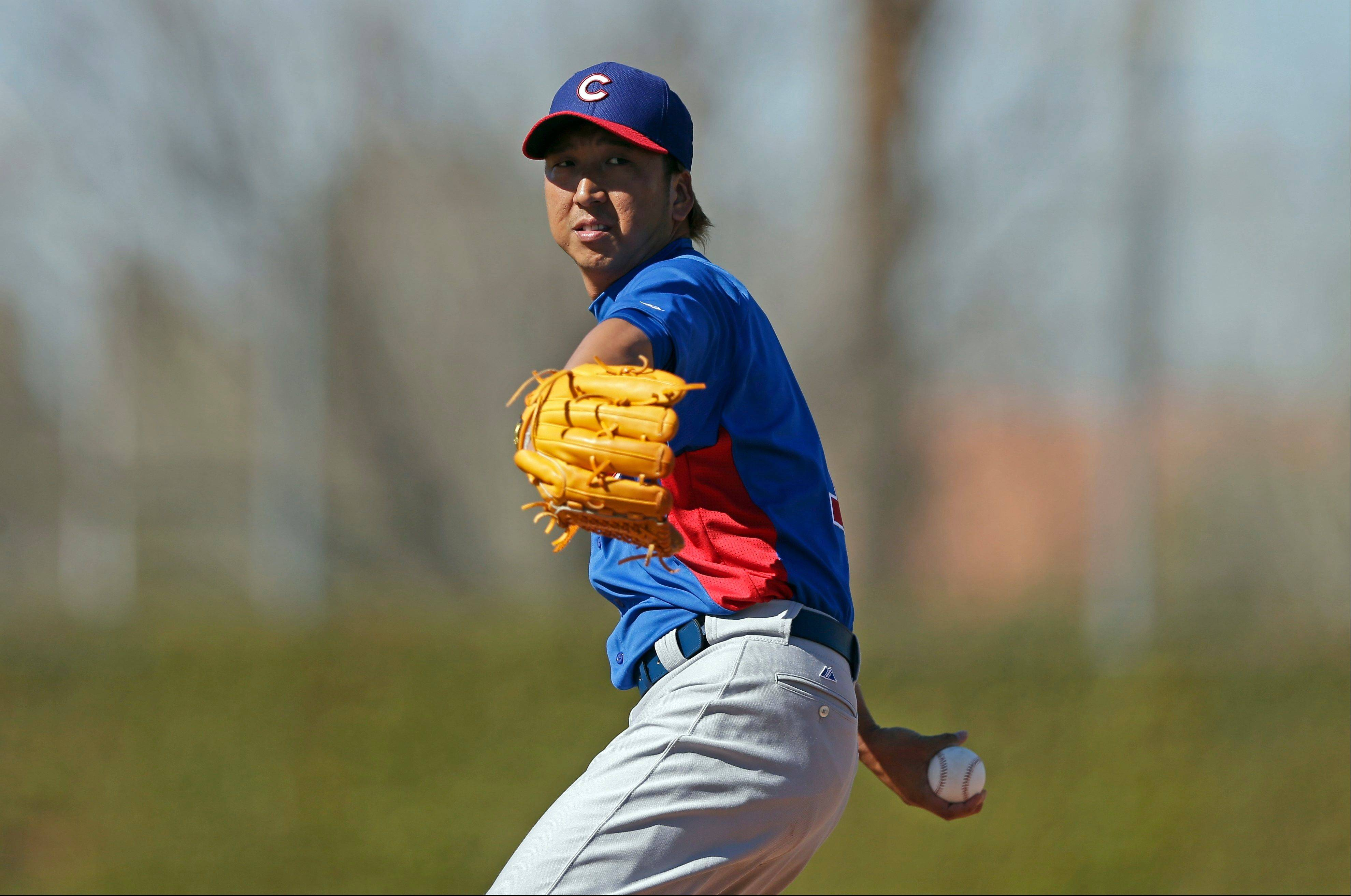 The Cubs expect to get a lot of innings from 32-year-old reliever Kyuji Fujikawa, who had a 1.32 ERA in Japan last year.