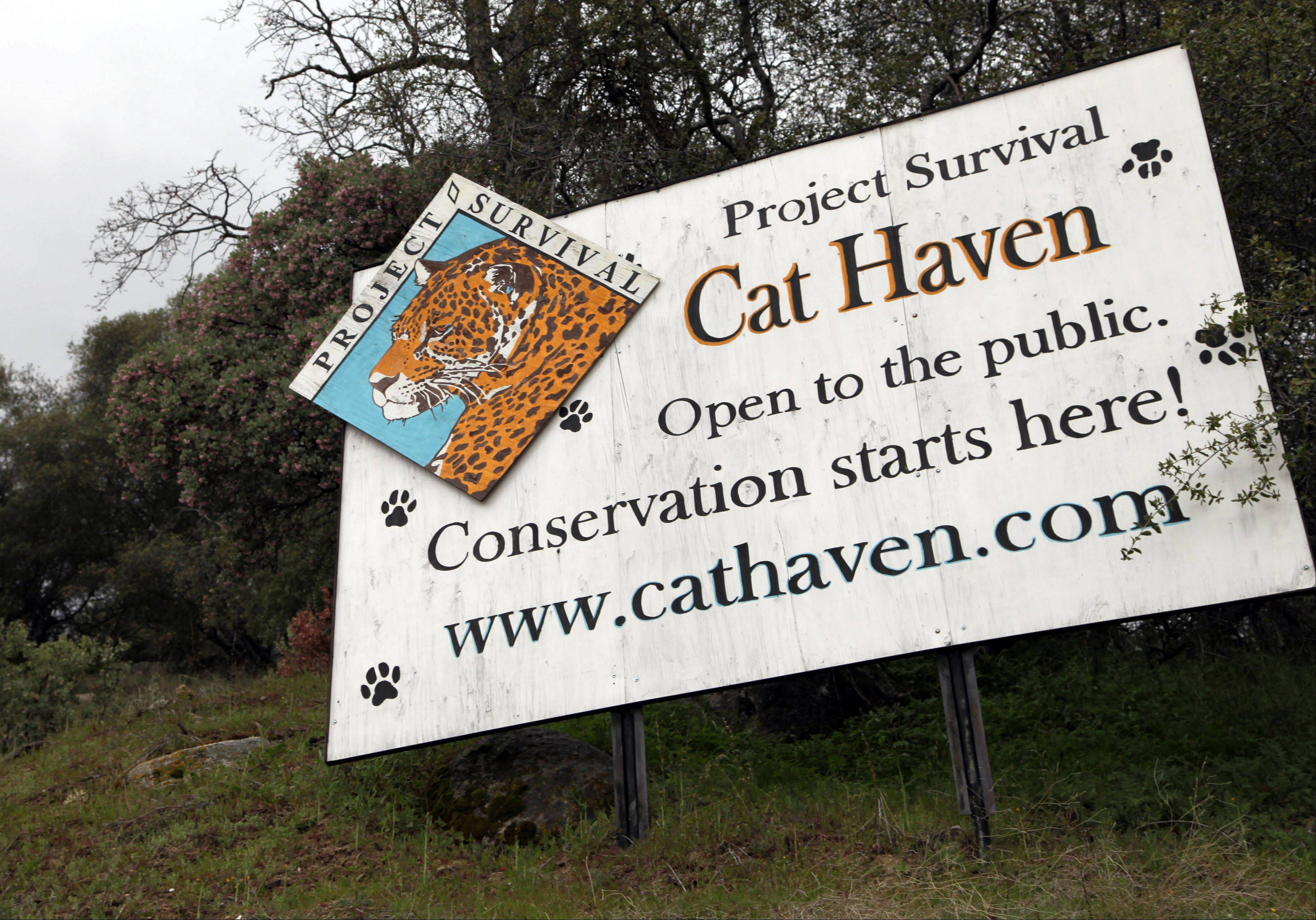 A sign posted near the gate near at the entrance of Cat Haven, the exotic animal park in central California where a 26-year old female volunteer intern was killed by a lion, in Dunlap, Calif.