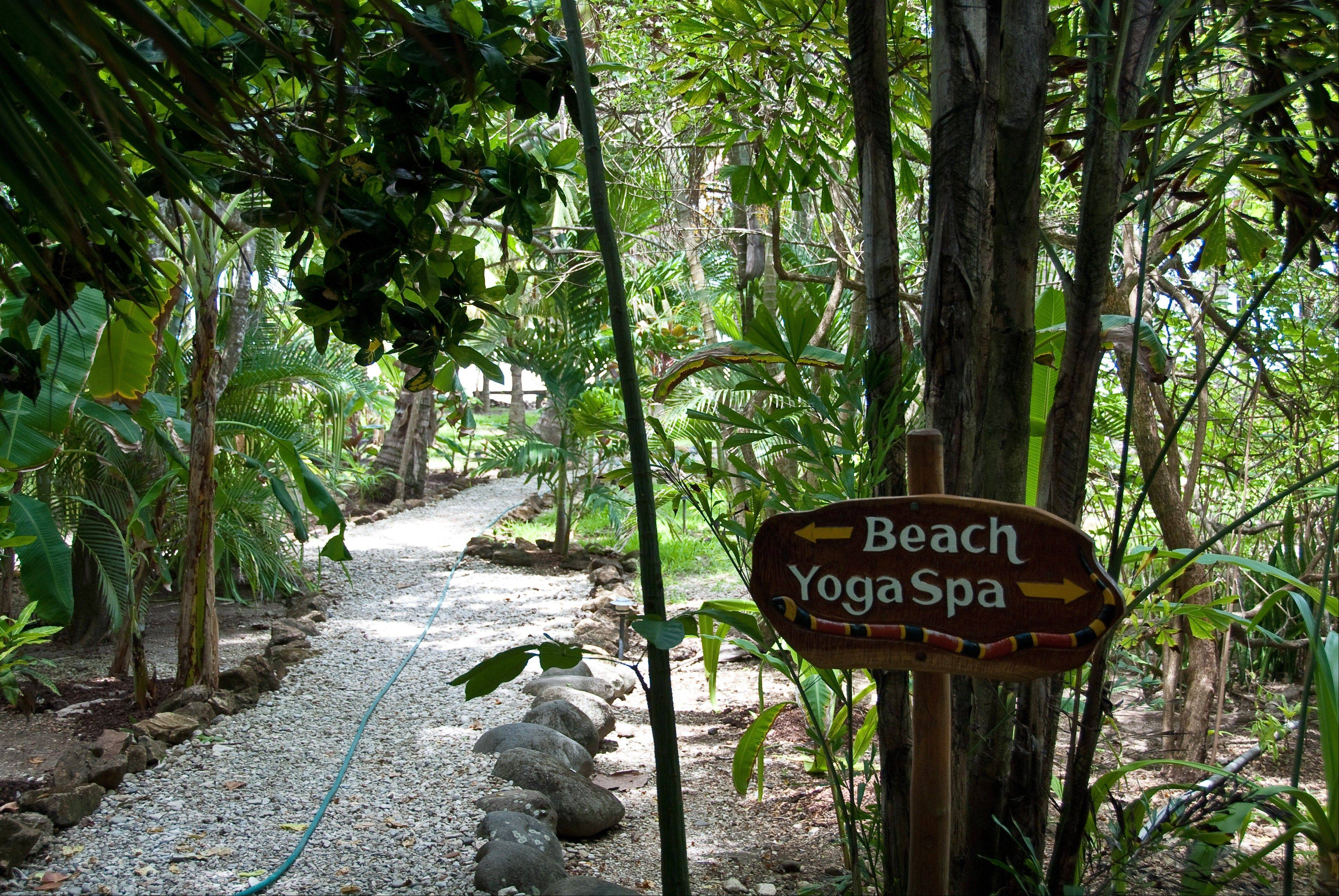 The grounds of Pura Vida Adventures, a surf and yoga camp in Malpais, Costa Rica.