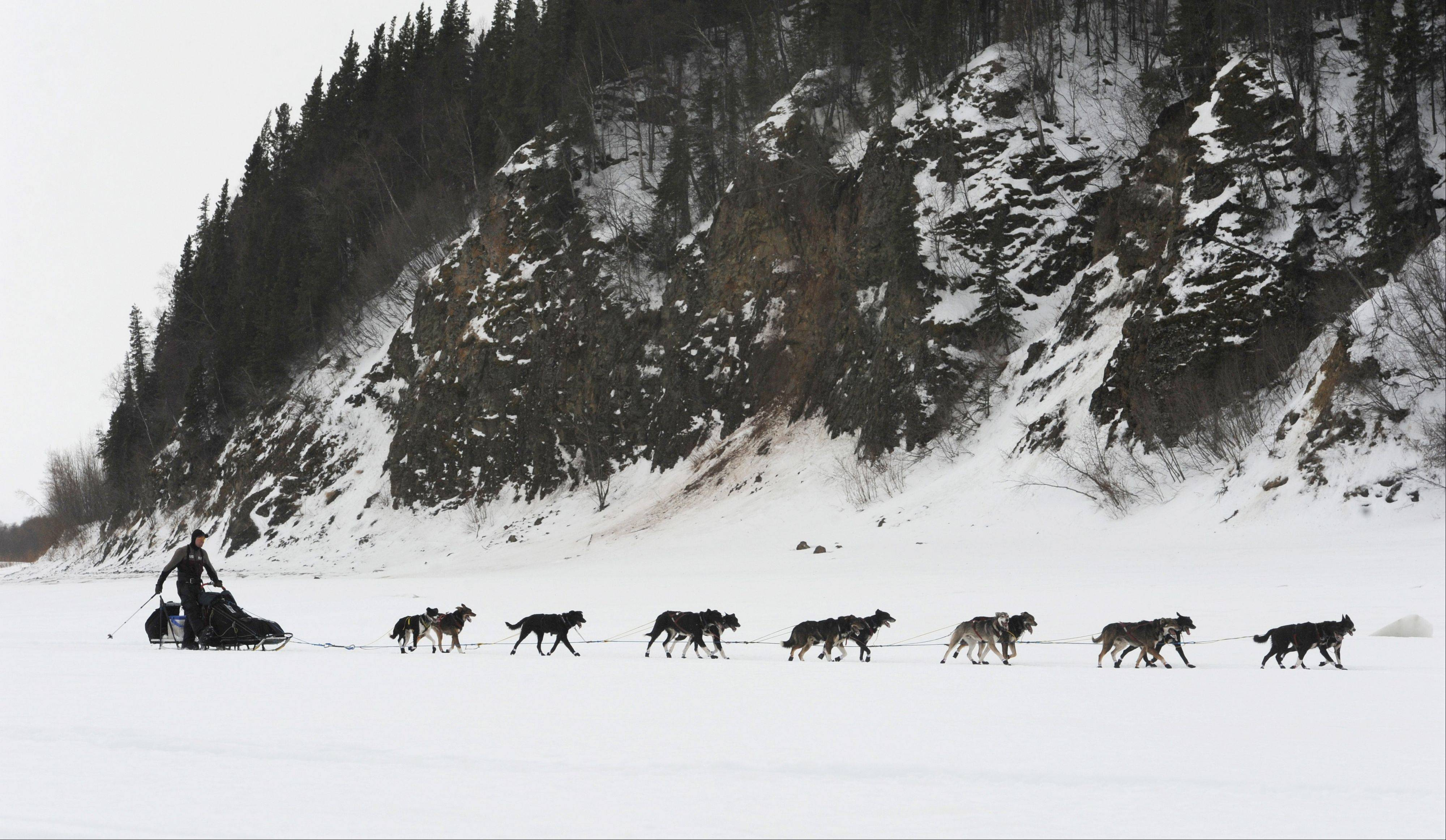 Musher Ken Anderson drives his team up the Yukon River.
