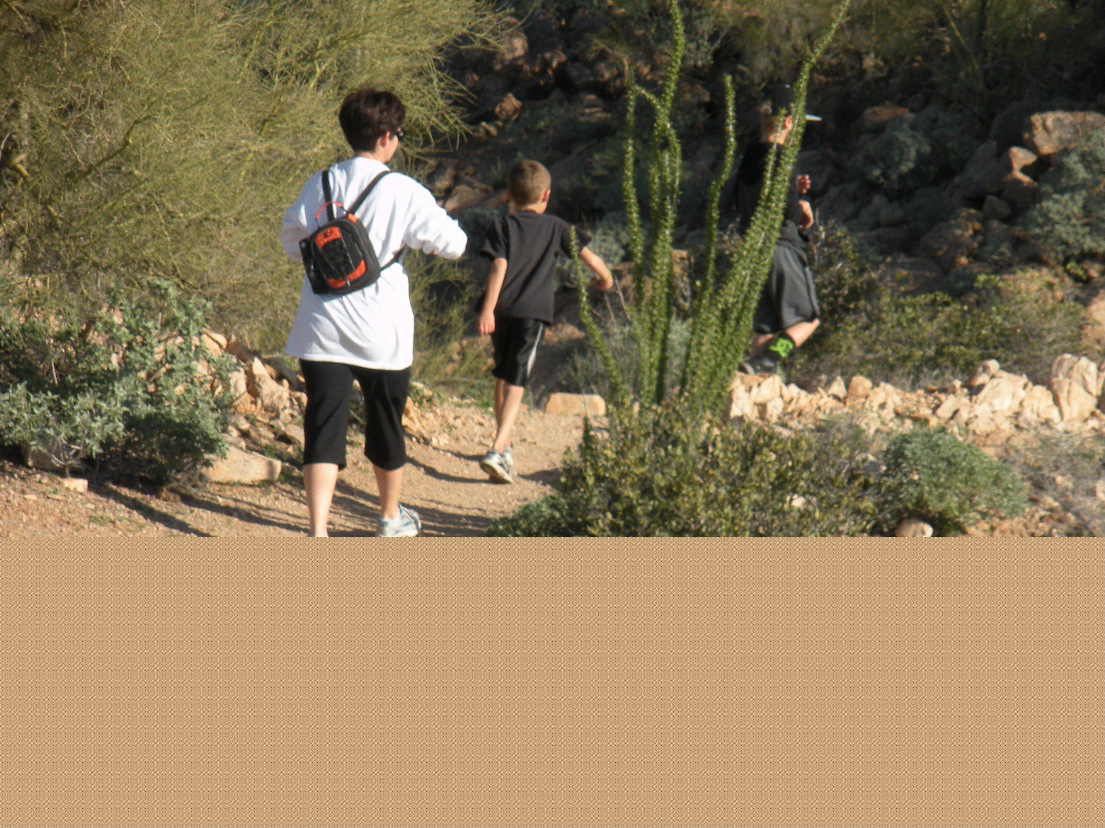 Usery Park in the center of Mesa offers hiking trails in the Sonoran Desert.