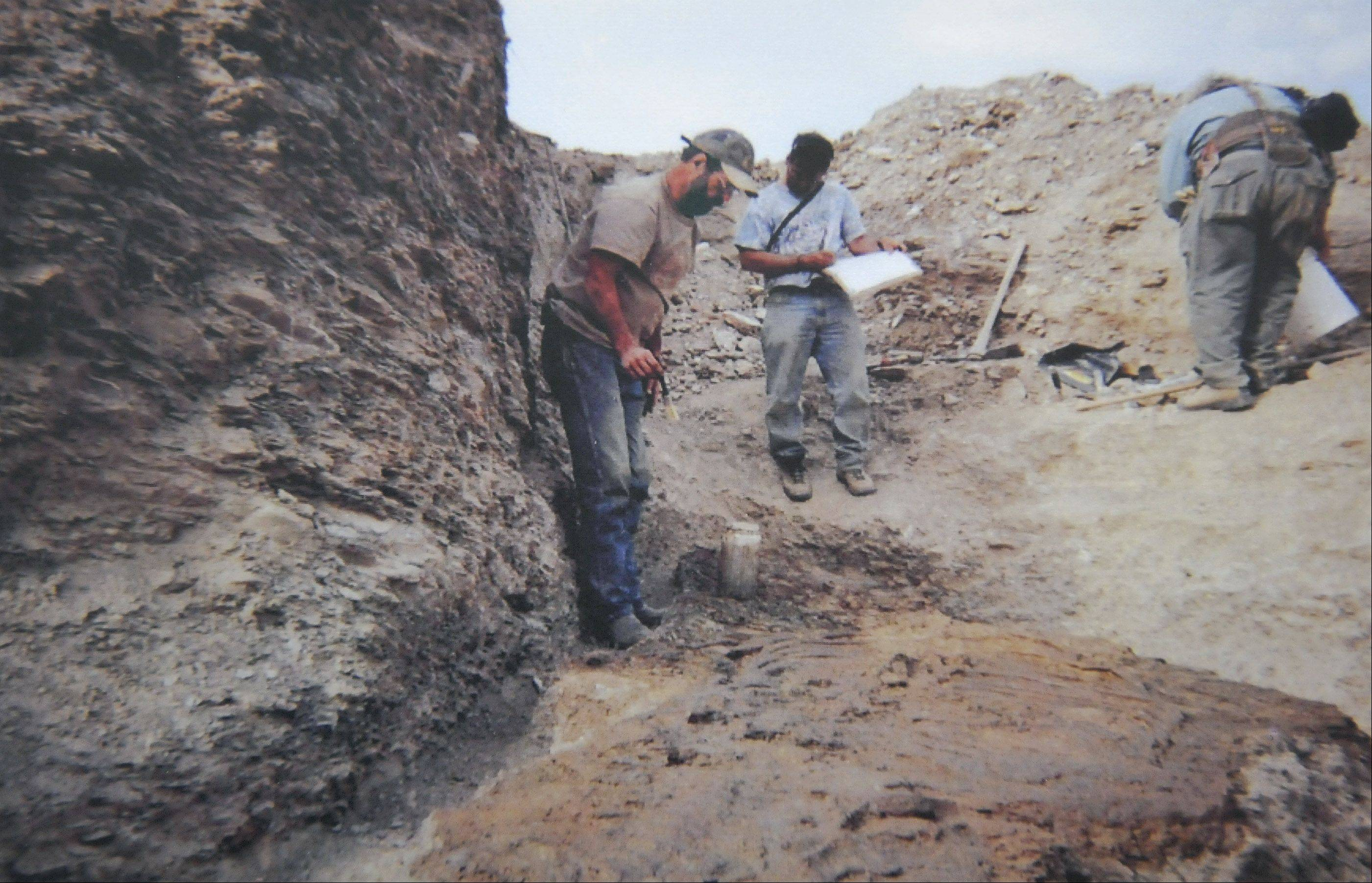 This photograph shows Rob Sula working on a site map for the tylosaurus he found in Nebraska.