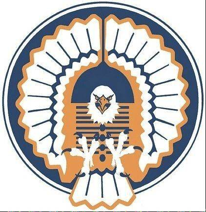 "This suggestion of an eagle earned the most ""likes"" on a Facebook page dedicated to finding a replacement for the retired and controversial Chief Illiniwek at the University of Illinois"