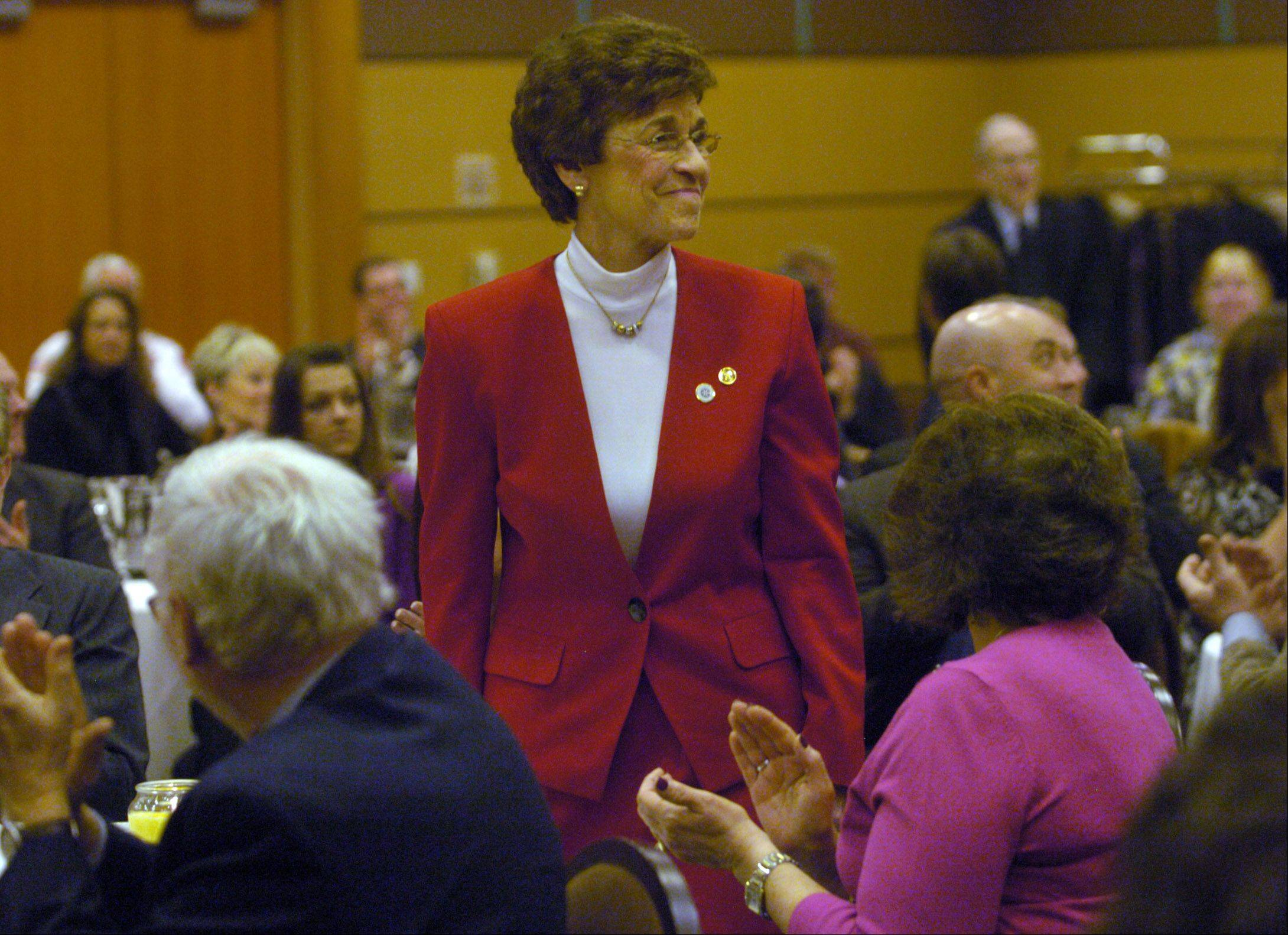 Arlene Mulder is retiring after 20 years leading Arlington Heights, creating one of the more sought-after mayoral openings in the suburbs.