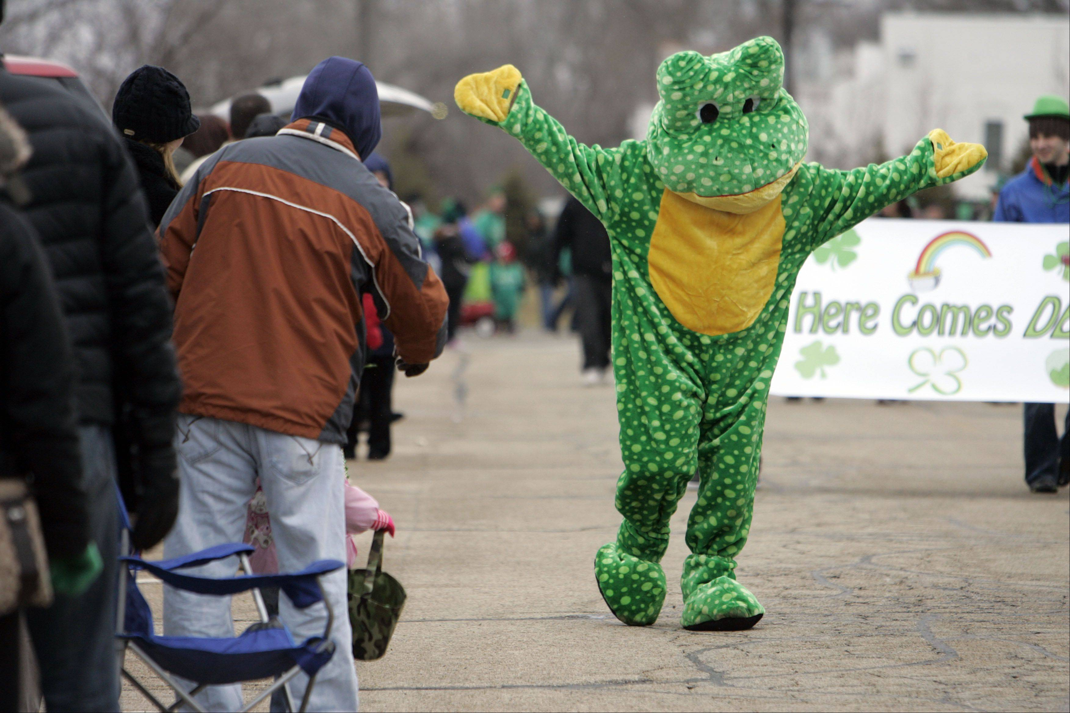 A green frog from the Chubby Bullfrog Bar & Grill in West Dundee makes his way down River Street during the Thom McNamee Memorial St. Patrick's Day Parade in East Dundee.