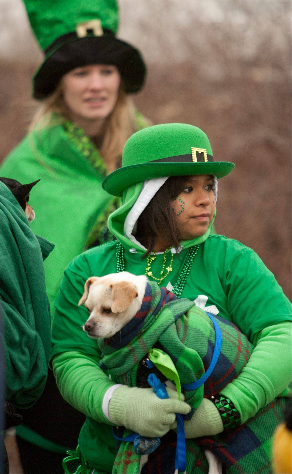 Irene Zaccarine of the Adopt-a-Pet Shelter in Naperville waits to step off Saturday morning in the Naperville's St. Patrick's Day Parade.