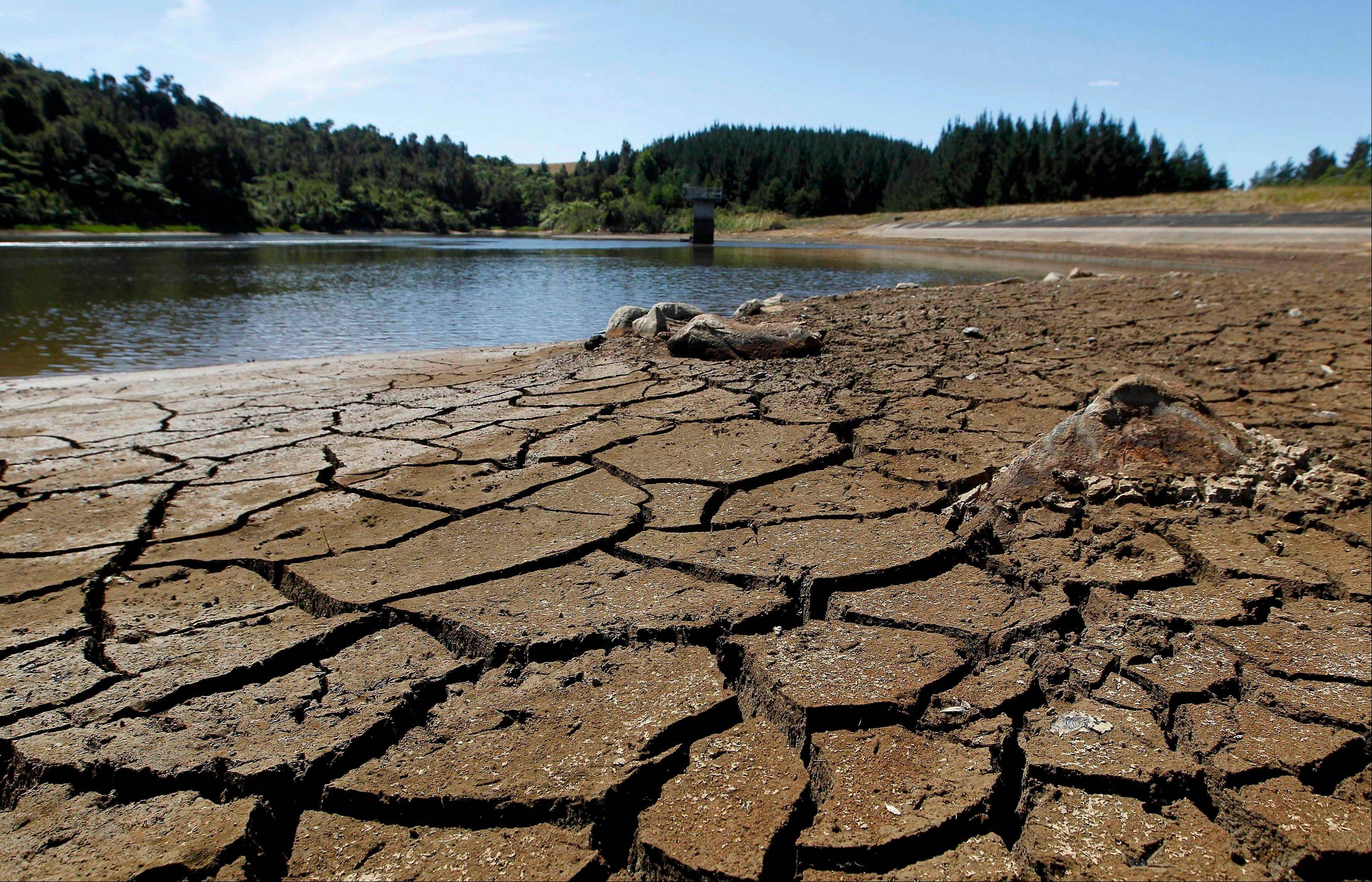 A drought in New Zealand�s North Island is costing farmers millions of dollars each day and is beginning to take a toll on the country's economy.