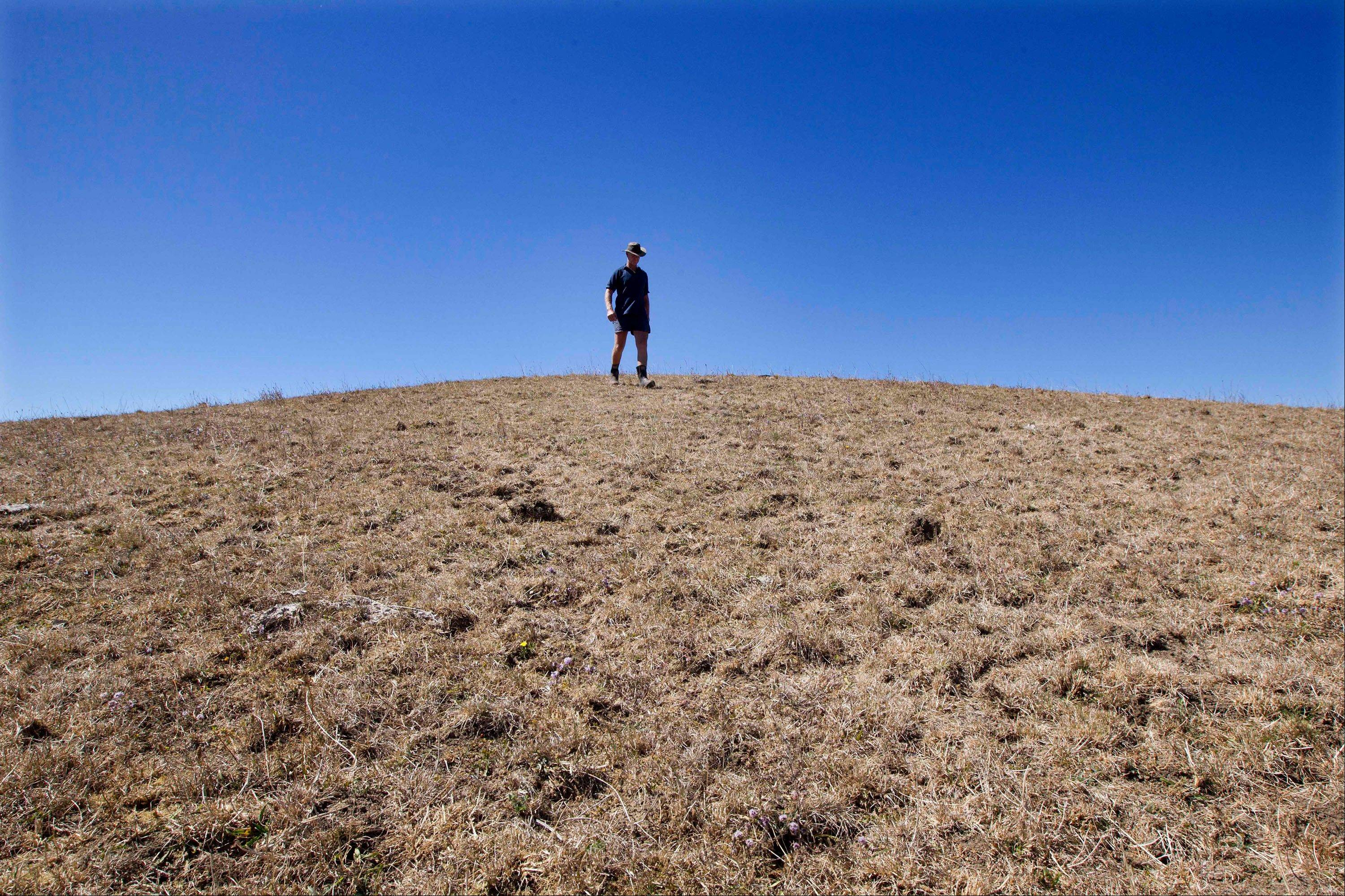 Farmer Peter Brown walks Monday on the dry ground on his dairy farm near Ohinewai, New Zealand.