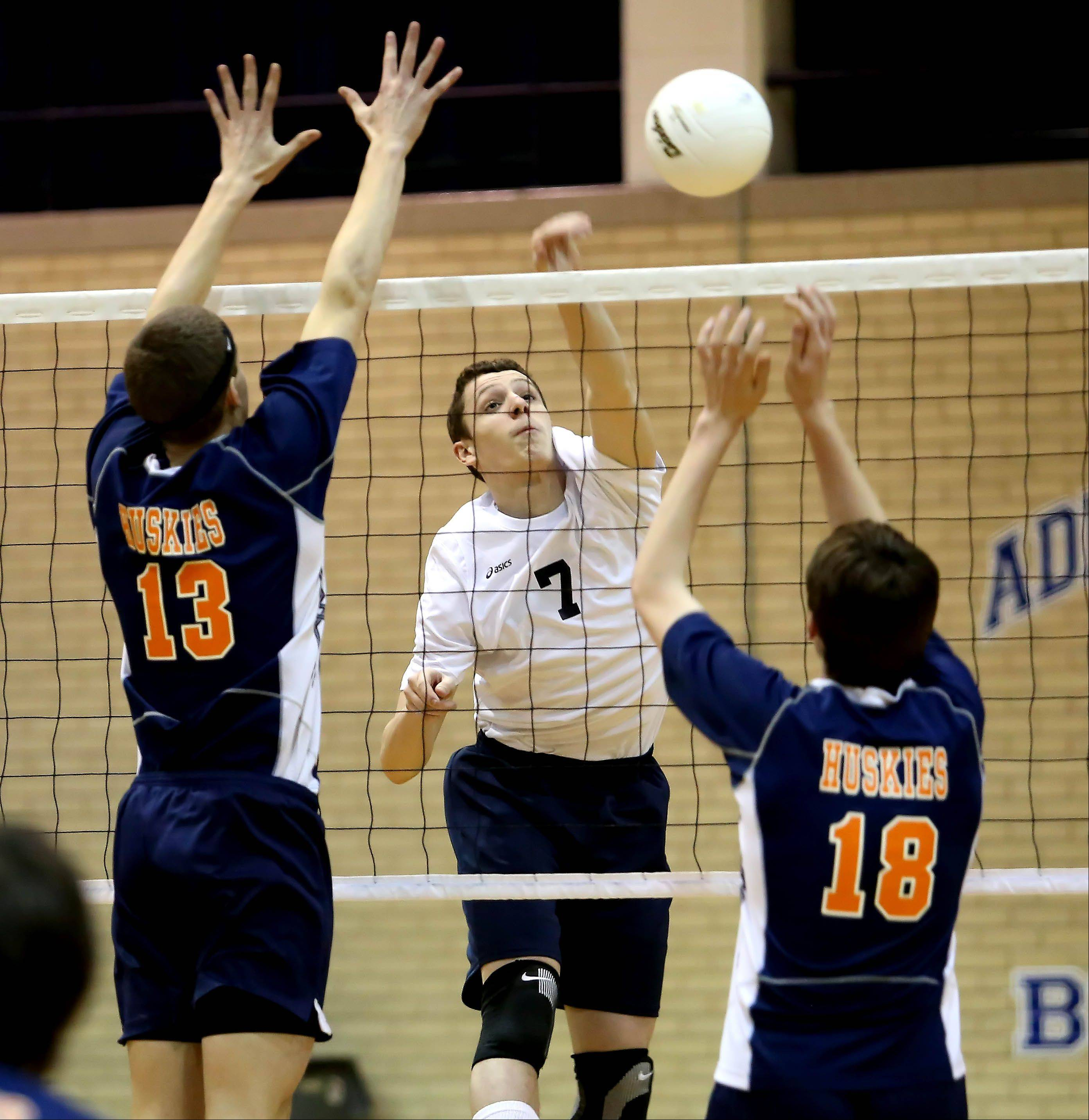 Alex Dickmann of Addison Trail spikes the ball in action against Oak Park River Forest during boys volleyball on Monday in Addison.