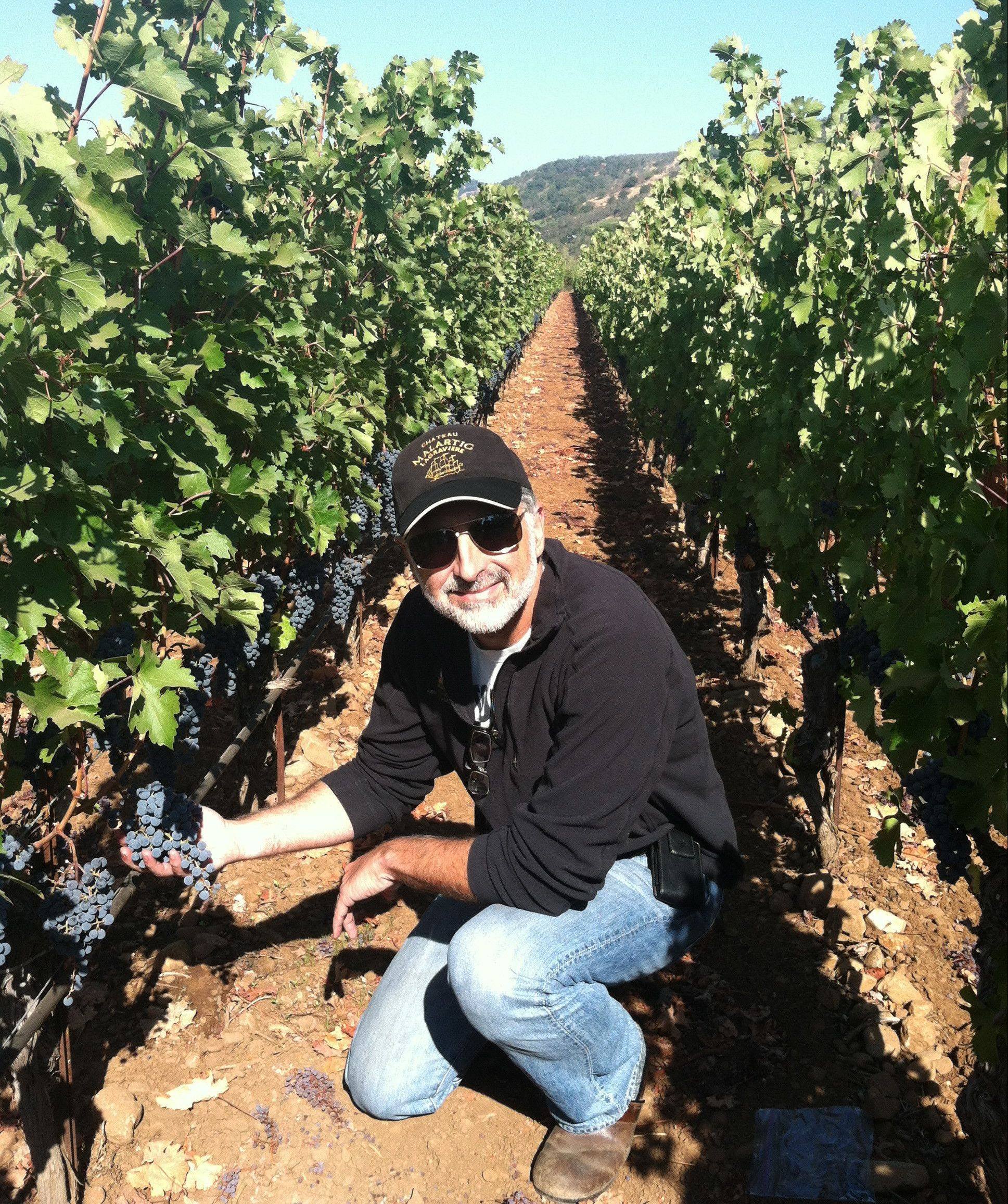 Winemaker Jeff Morgan samples Solomon grapes in the Covenant Wines vineyard in Napa Valley, Calif.