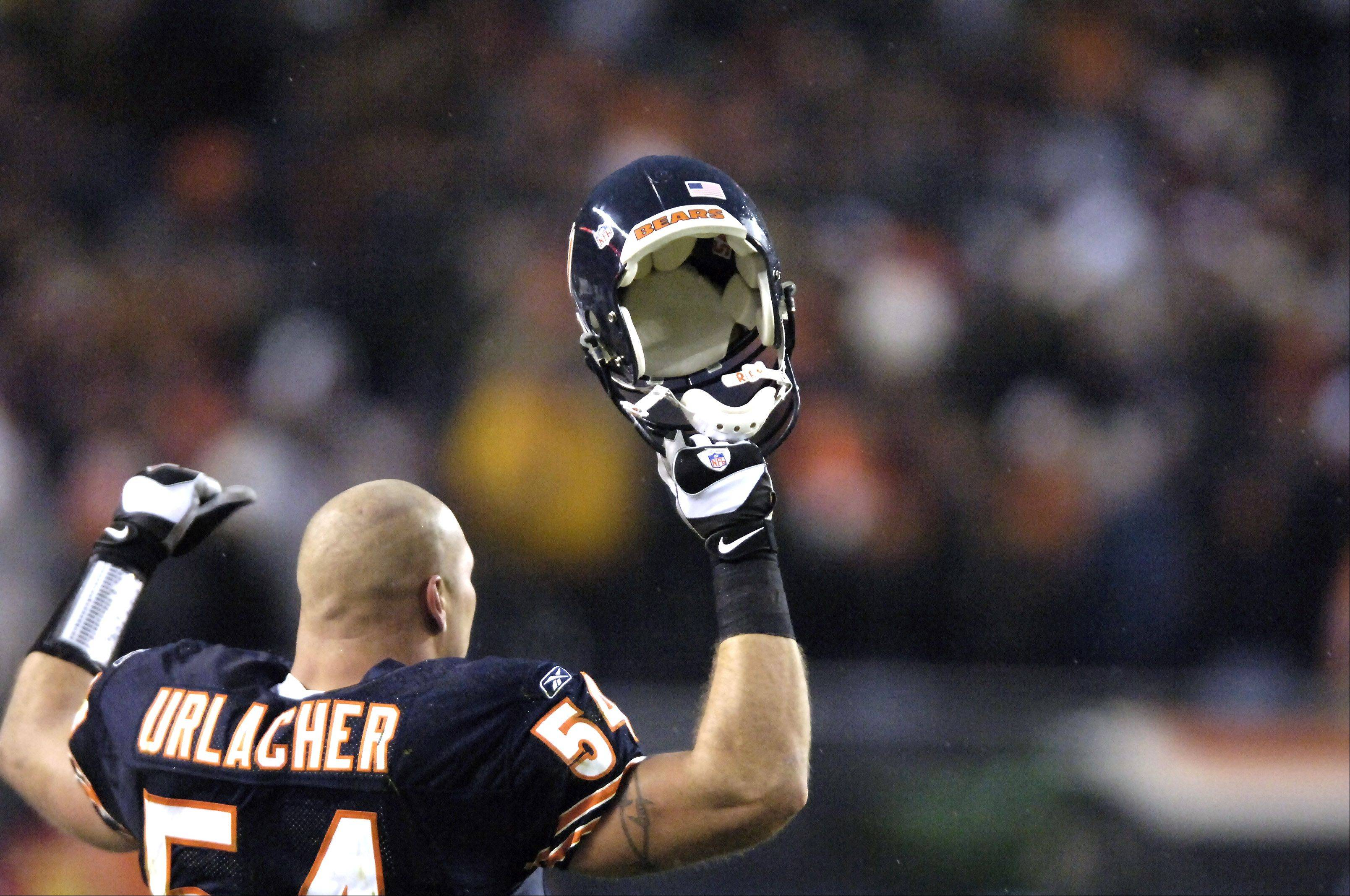 Brian Urlacher raises his arms in victory over the Denver Broncos.