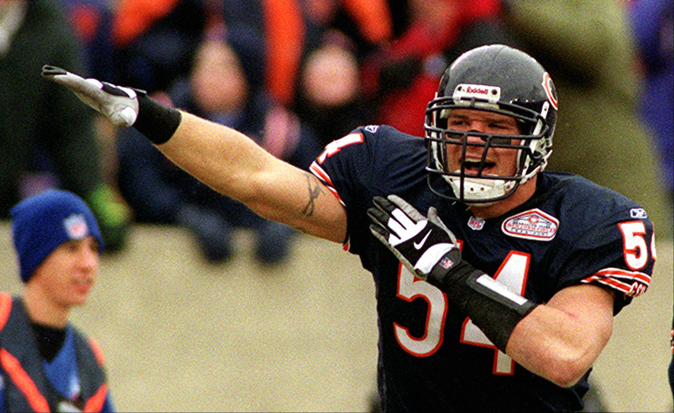 The Bear's Brian Urlacher celebrates against the Jacksonville Jaguars.